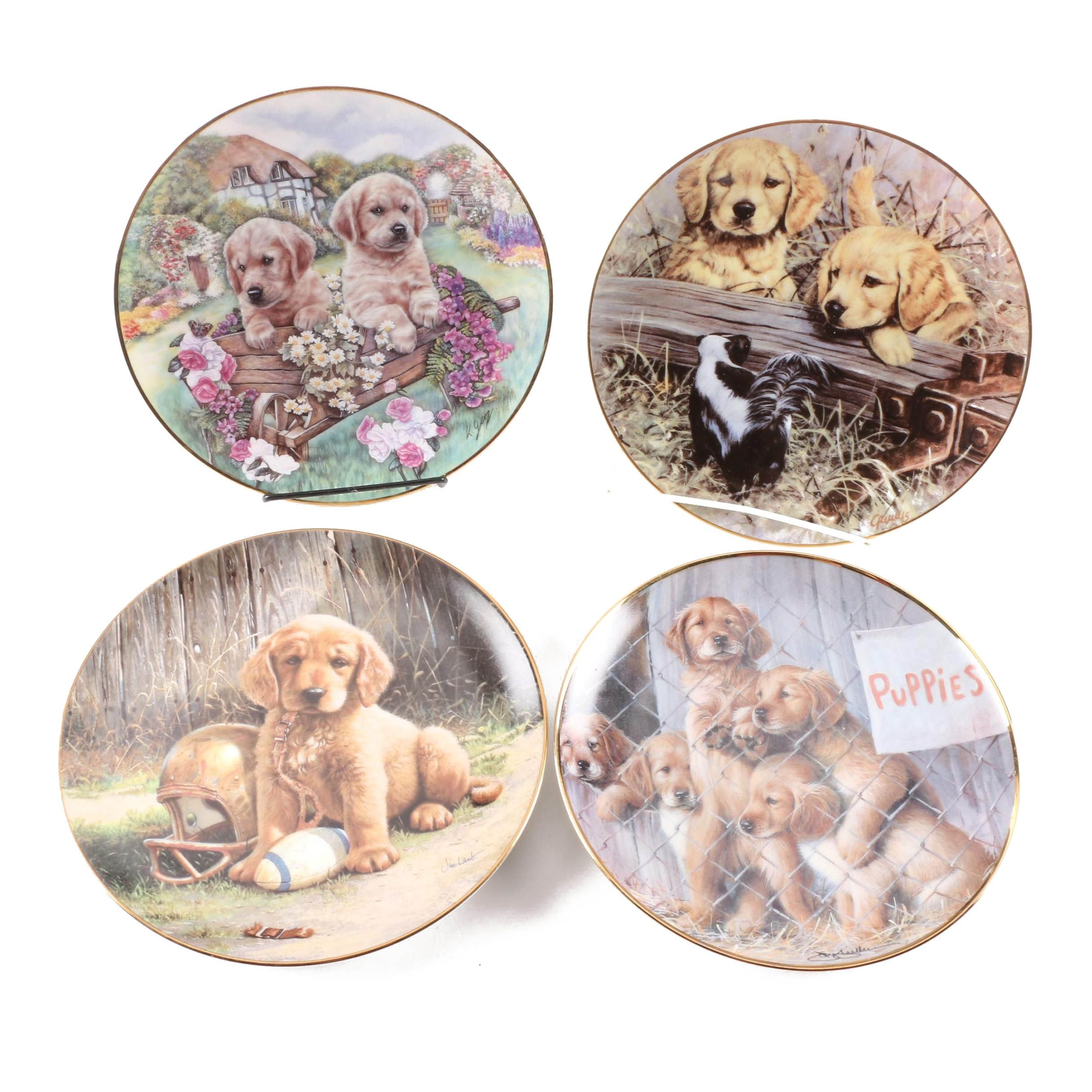 Golden Retriever Puppy Porcelain Collector Plates