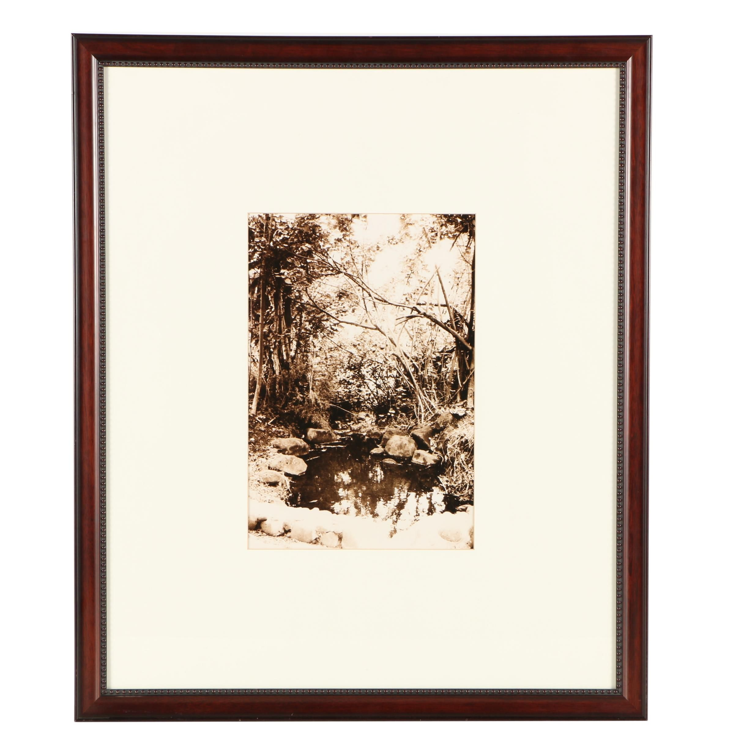 Giclee Print After Photograph of a Sepia Tone Garden Landscape