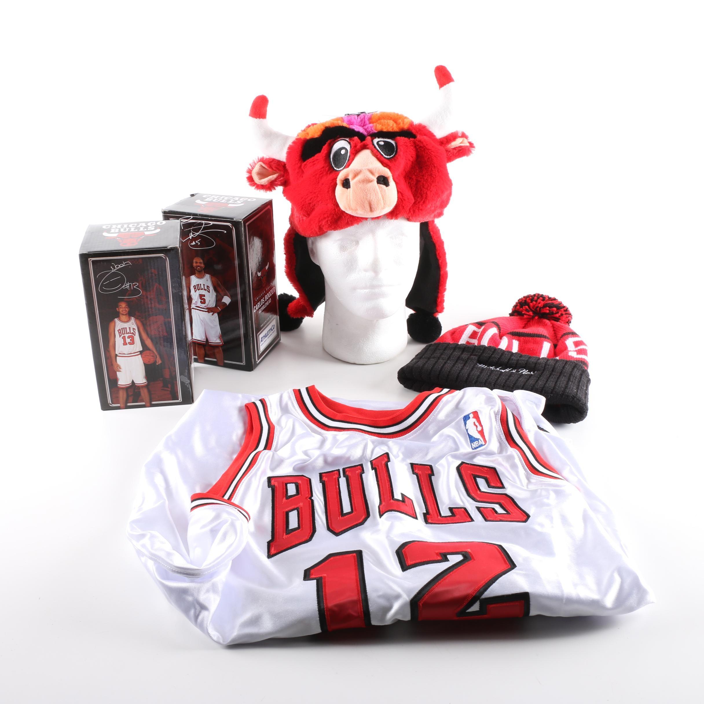 Chicago Bulls Memorabilia