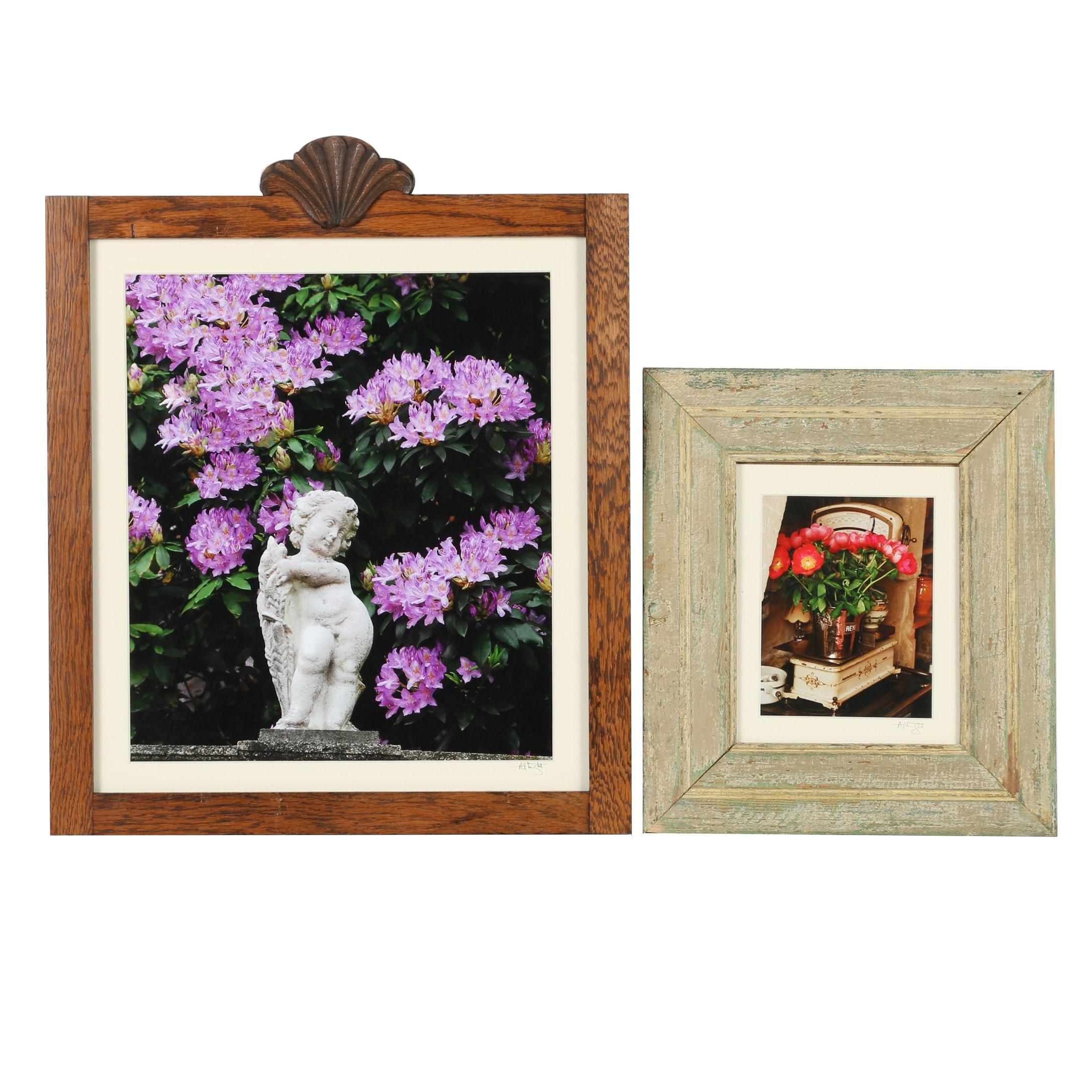 Dan Albright Color Photographs