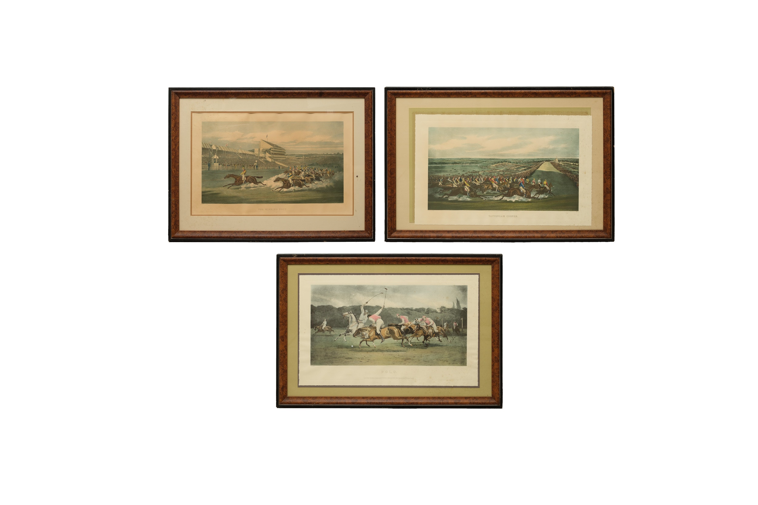 Three Hand-Colored Equine Engravings