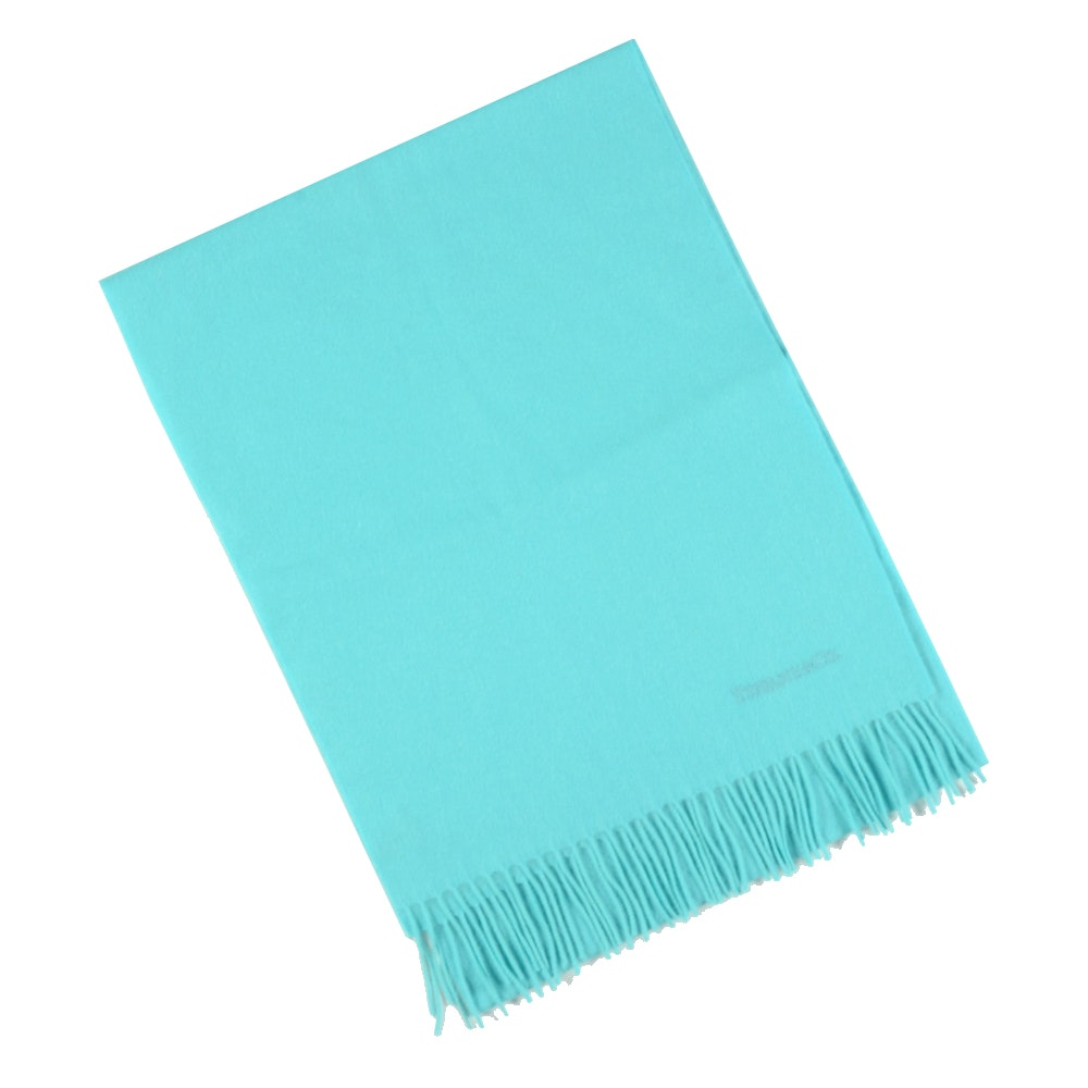 Tiffany & Co. Blue Embroidered Scarf