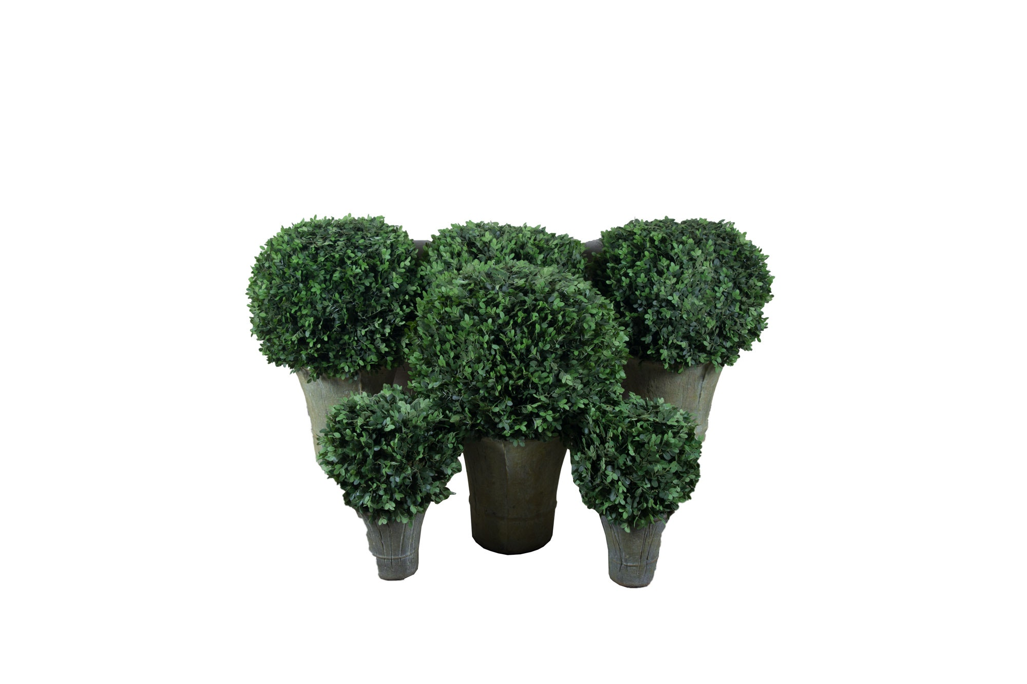 Six Various Sized Topiary Decor