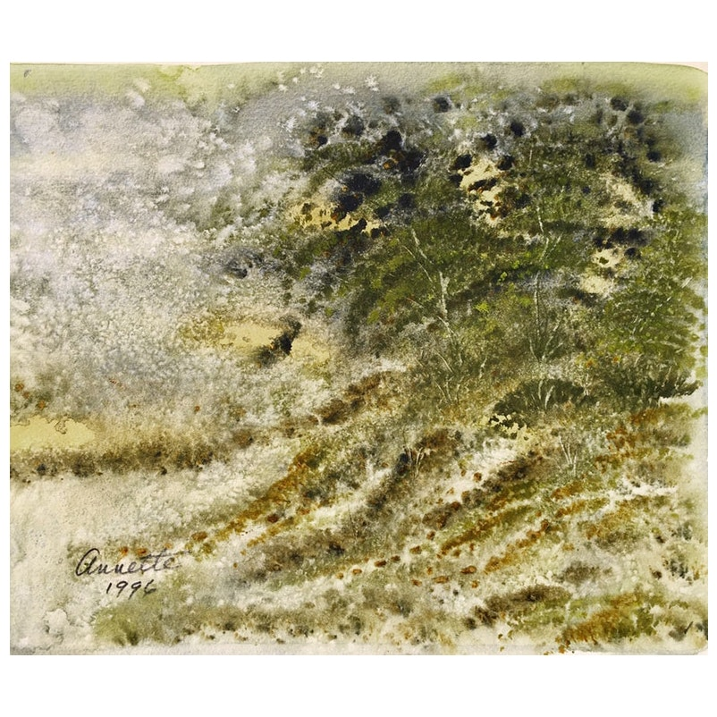 Dappled Landscape by Annette, 1996