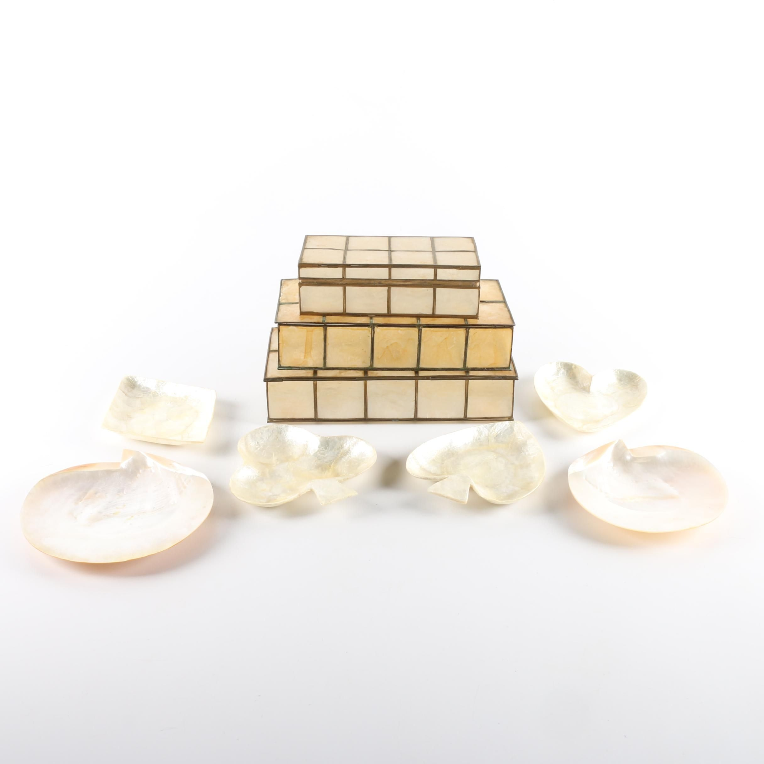 Shell Trays and Boxes