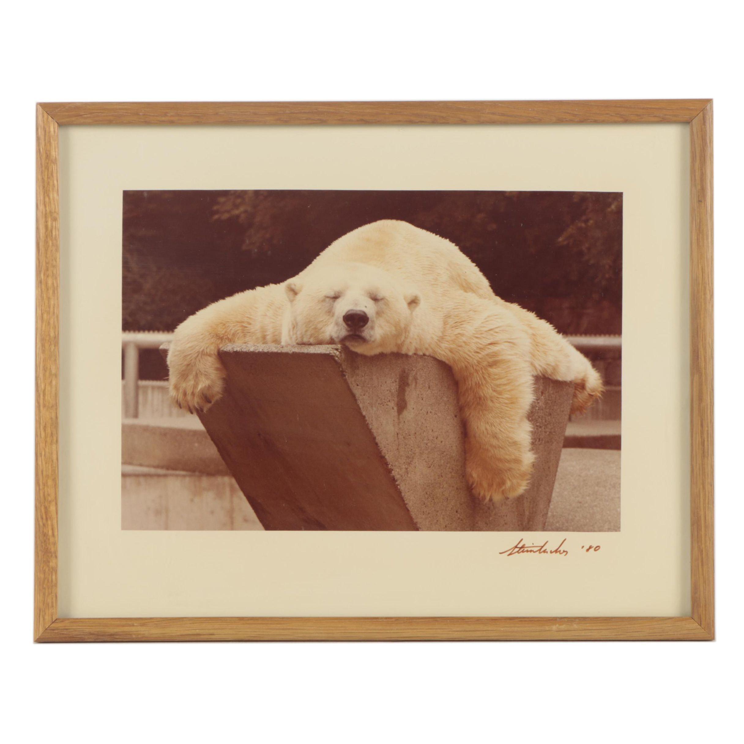 "Jim Steinbacher Color Photograph ""Do Not Disturb"""