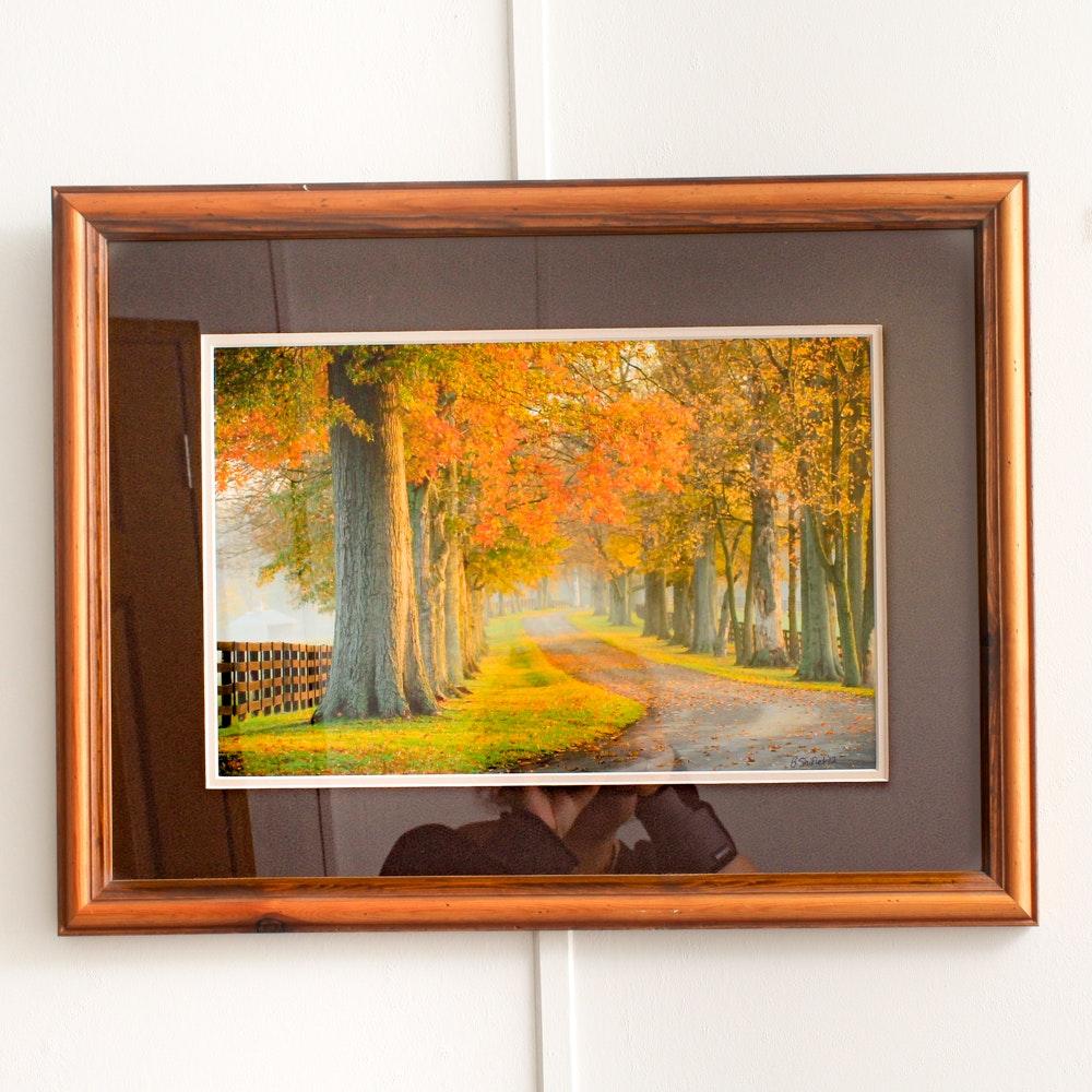 """Bobby Shiflet Color Photograph """"Xalapa Farm- Bourbon Co. Kentucky"""""""