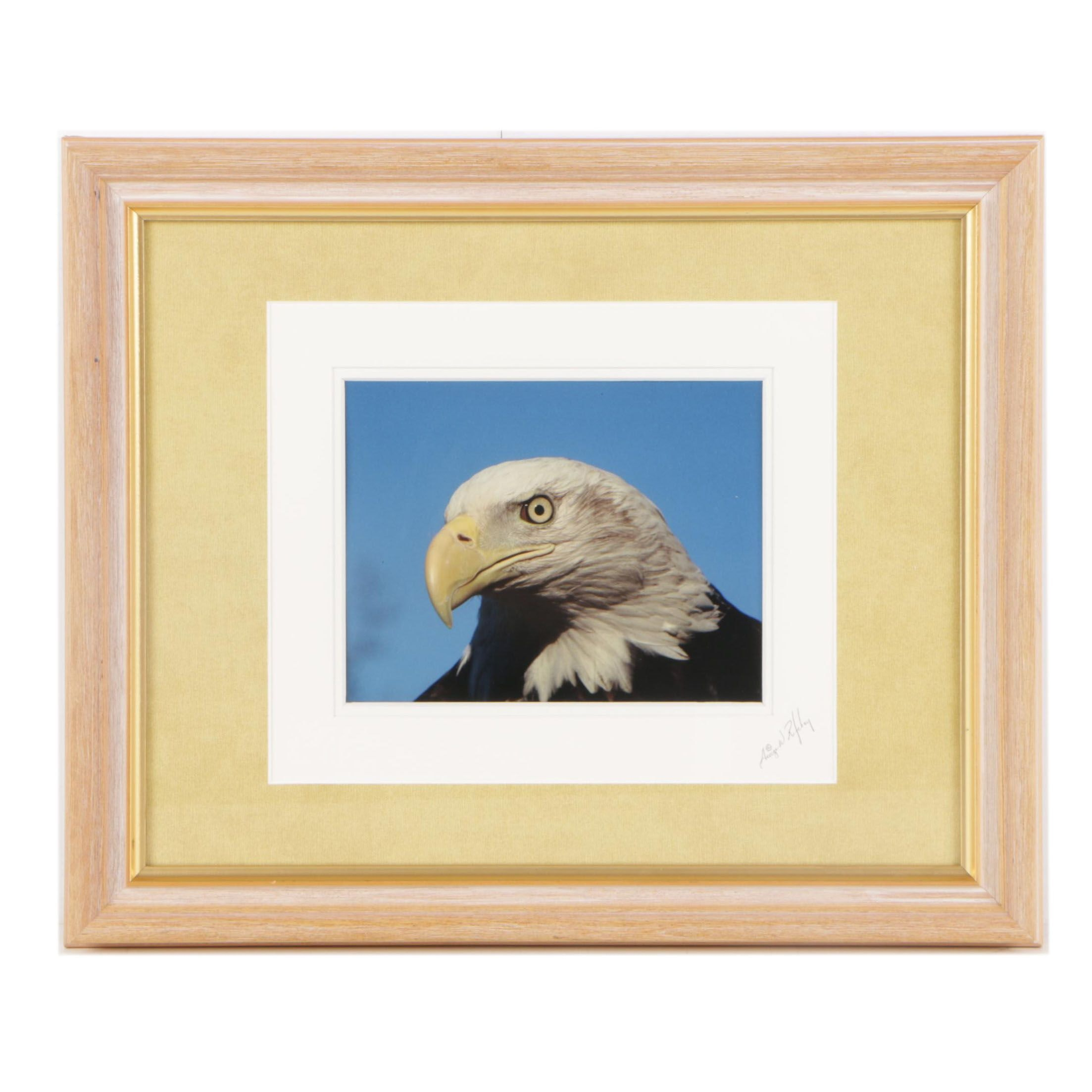 George W. Ritchey Color Photograph of Bald Eagle