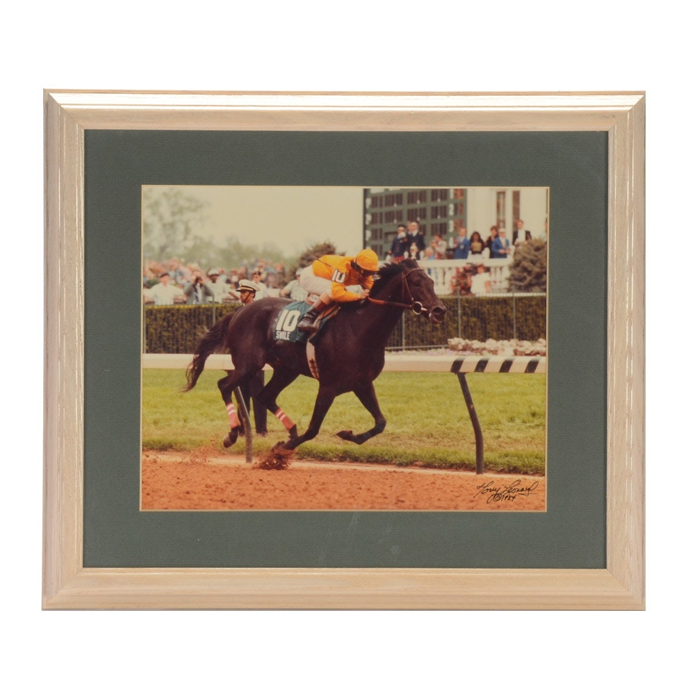 Framed Photo of Racehorse Swale