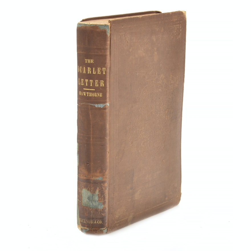 the use of light in the scarlet letter by nathaniel hawthorne Iii the recognition, page 4: read the scarlet letter, by author nathaniel hawthorne page by page, now free, online.