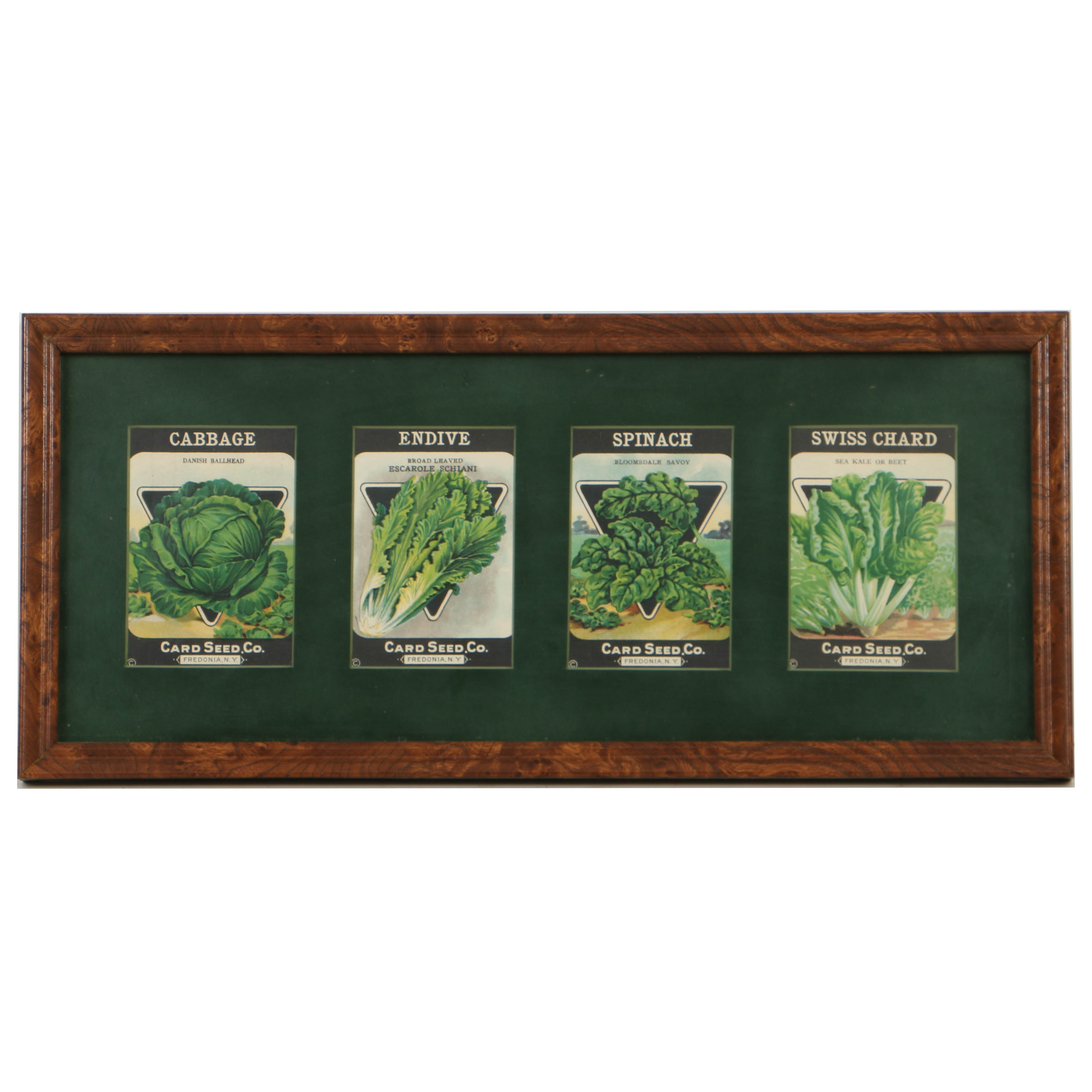 Early 20th-Century Card Seed Co. Chromolithograph Seed Packets