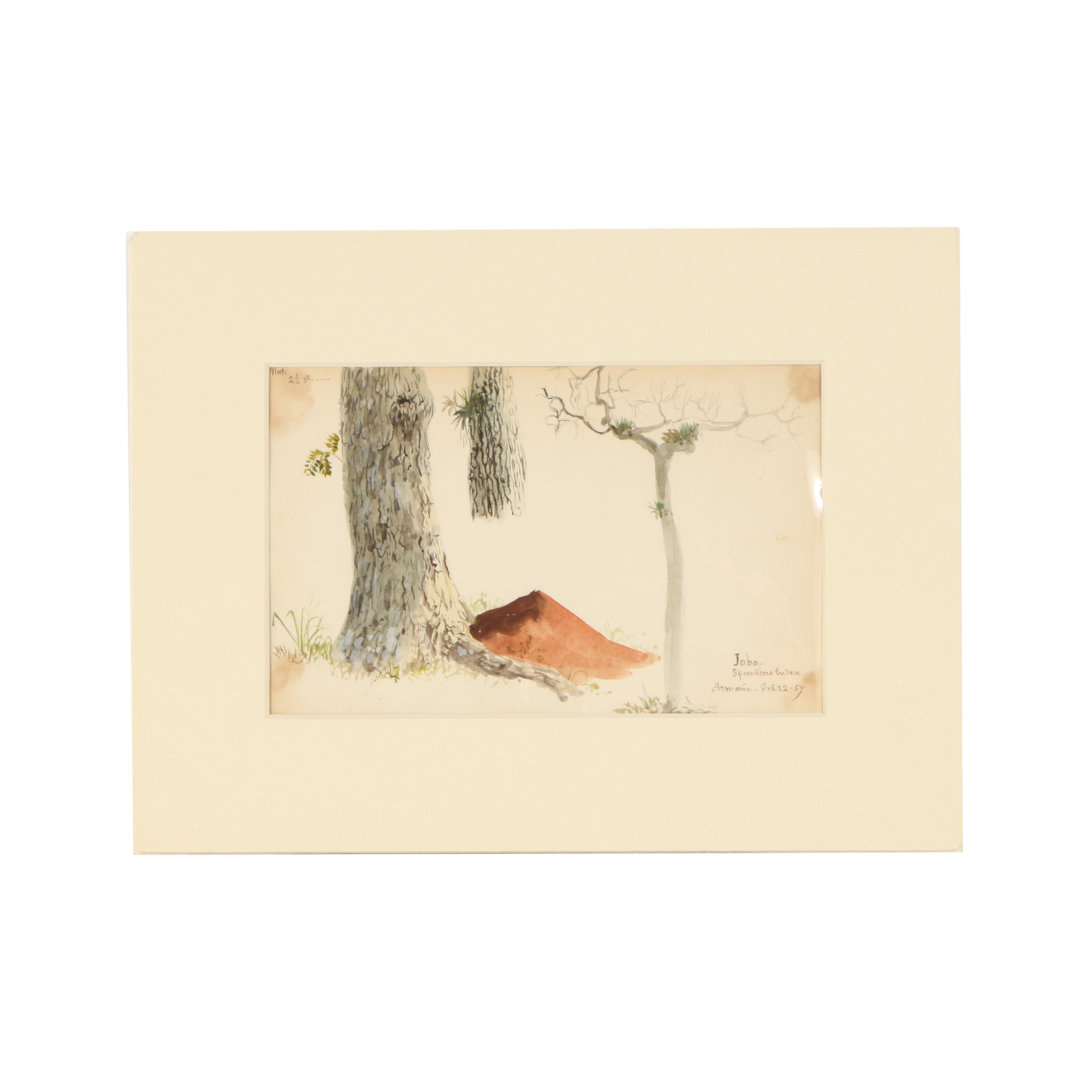 "Charles DeWolf Brownell Watercolor Painting ""Jobo"""