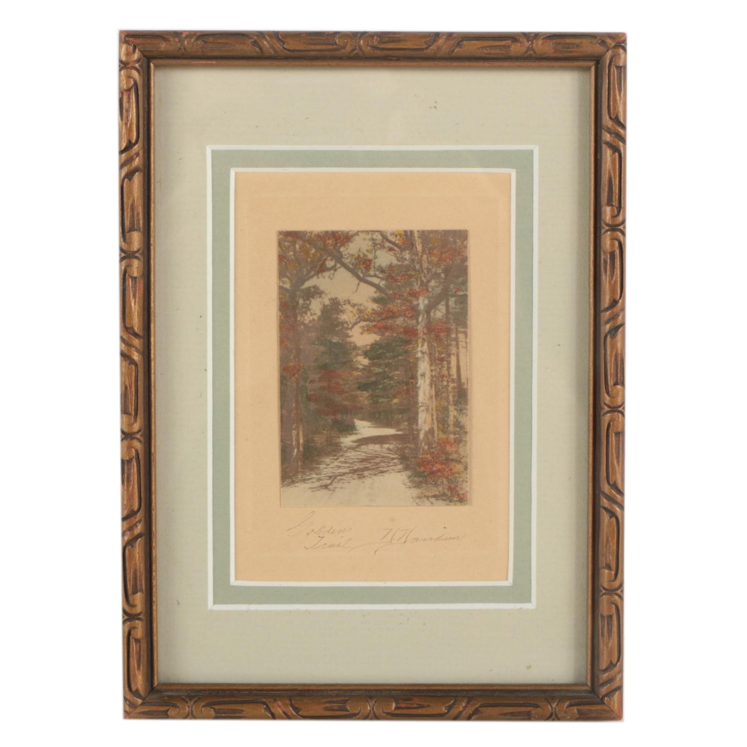 """Hand-Colored Silver Print Photograph """"Golden Trail"""""""