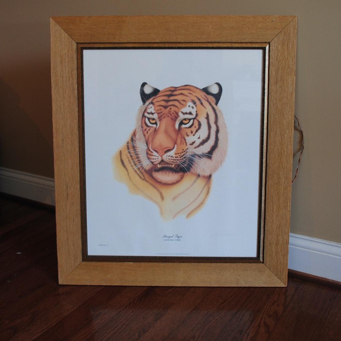 "Jim Oliver Offset Lithograph ""Bengal Tiger"""