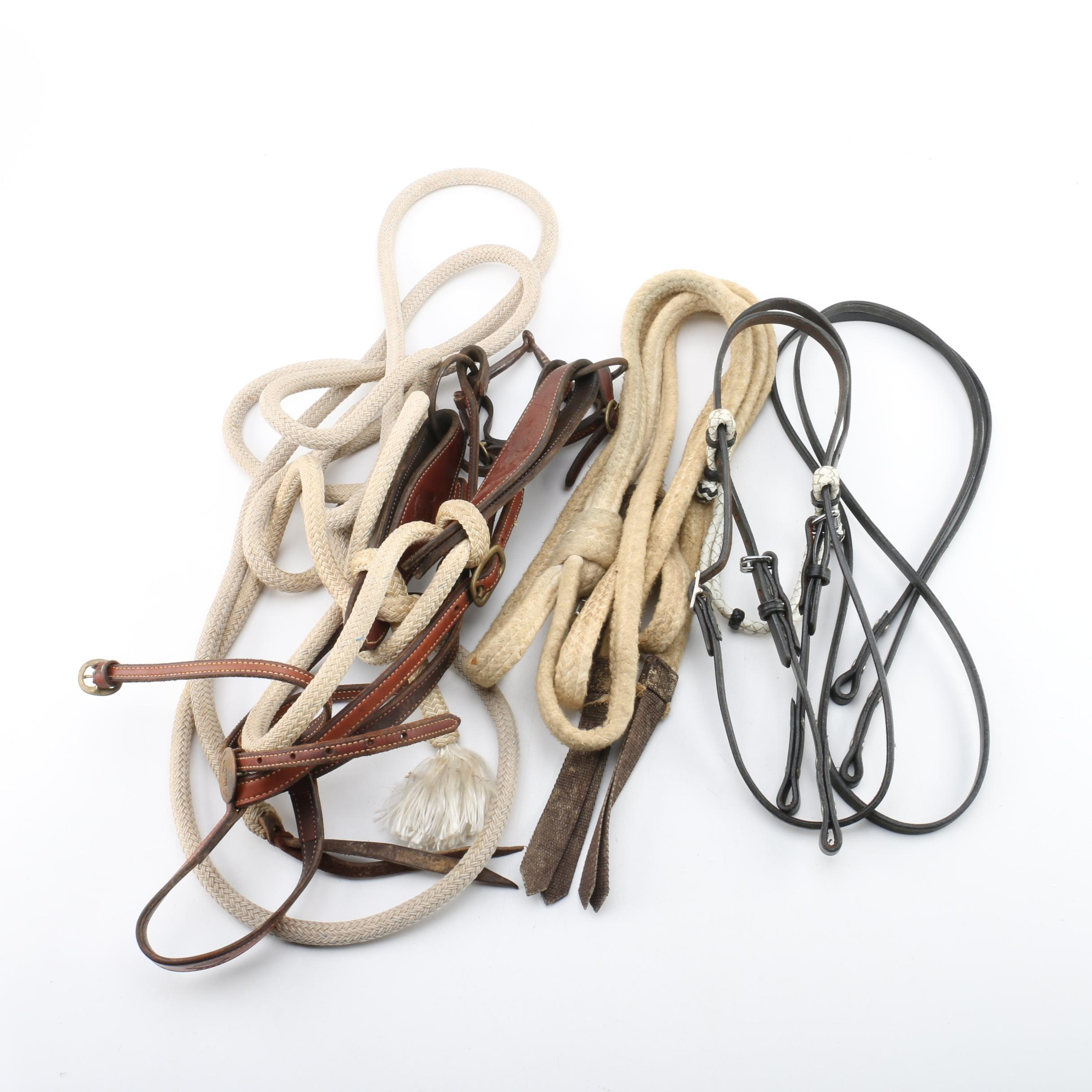 Horse Riding Tack and Rope