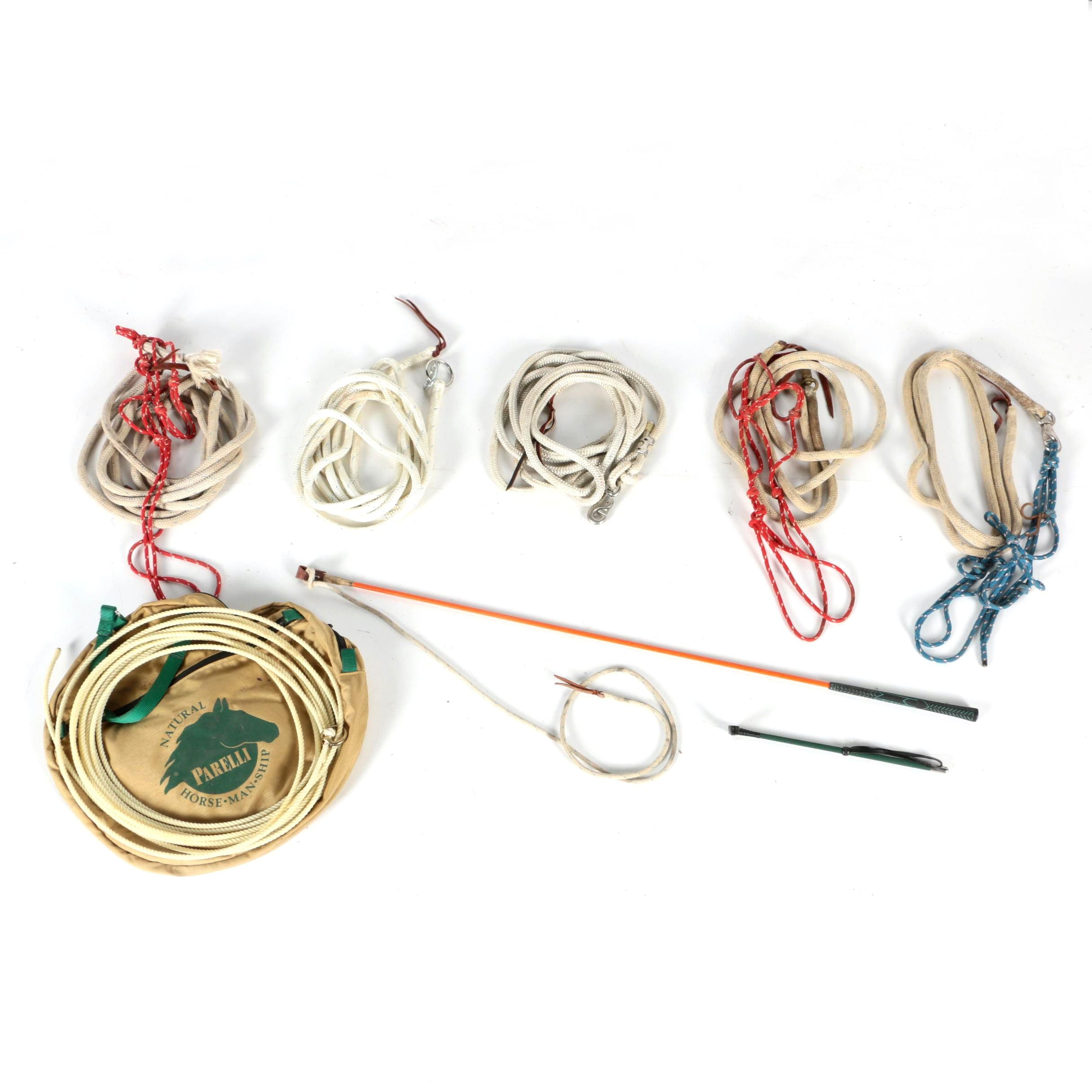 Parelli and Other Lead Ropes with Riding Crop and Whip