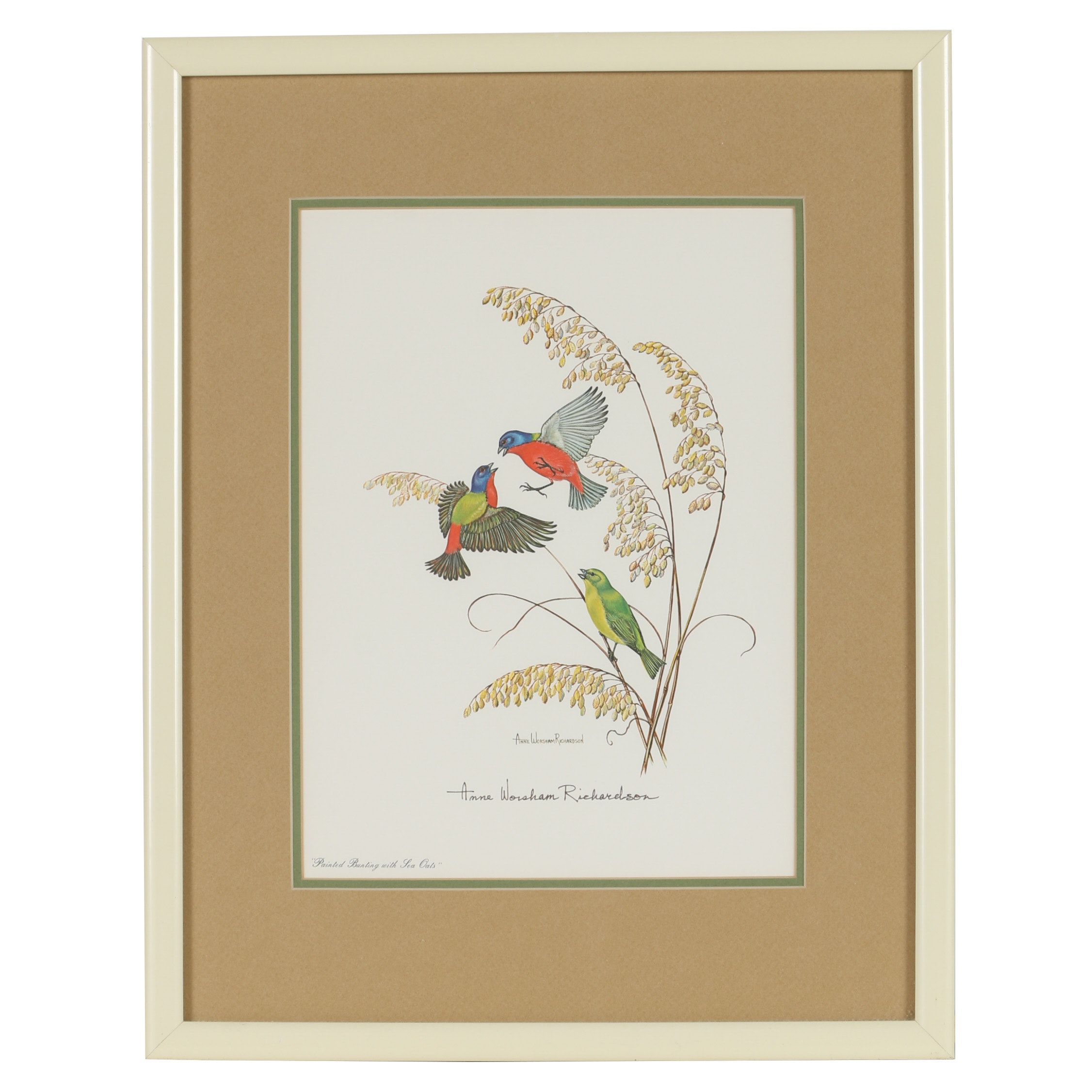 """Anne Worsham Richardson Offset Lithograph """"Painted Bunting with Sea Oats"""""""