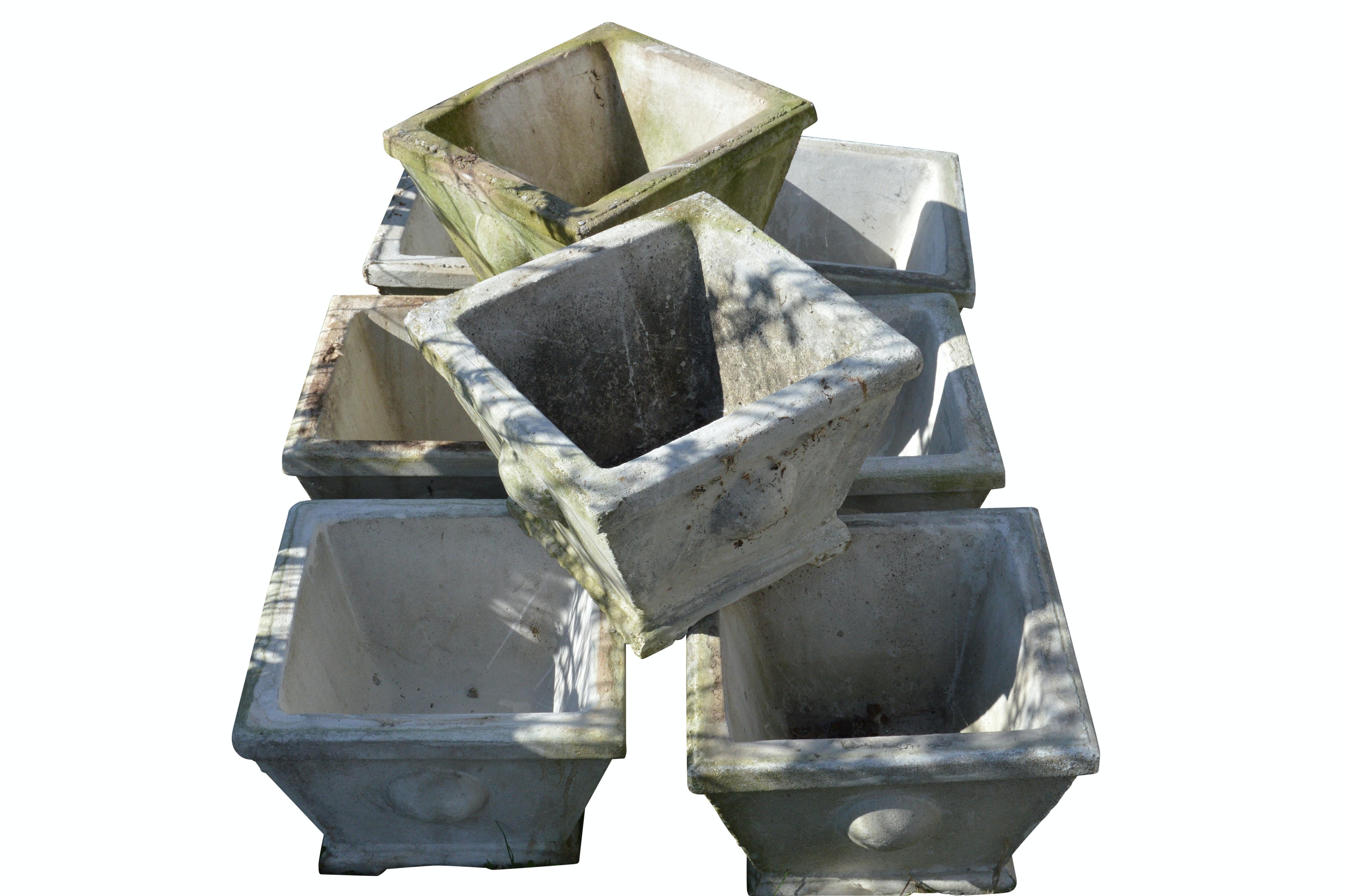 Eight Modern Concrete Planters