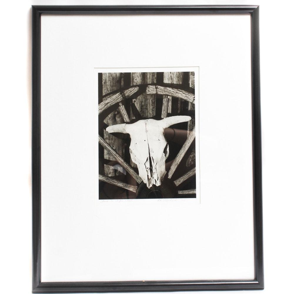 "P. N. Ellerbock Photograph ""Skull on Wagon Wheel"""