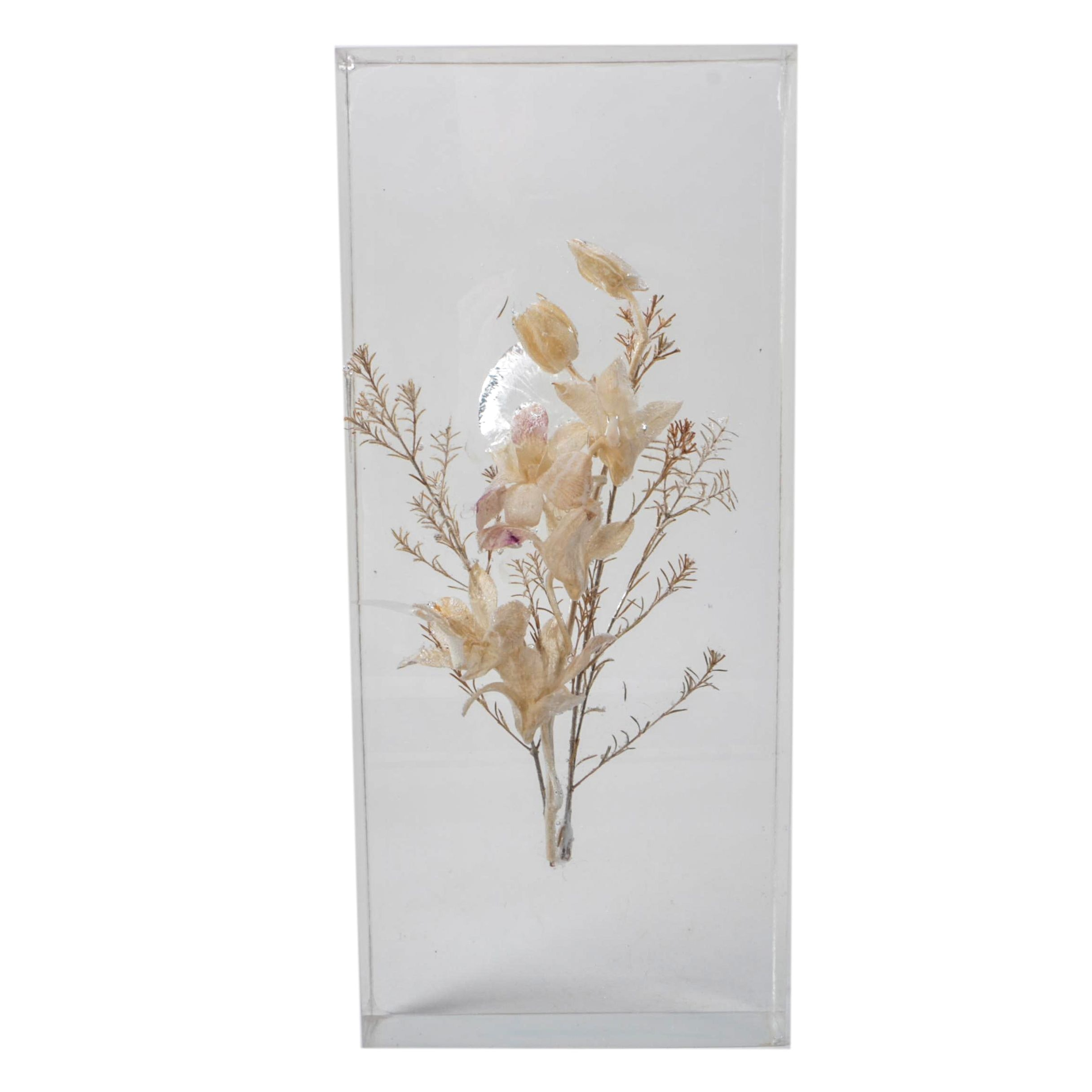 Preserved Blossoms Encased in Resin