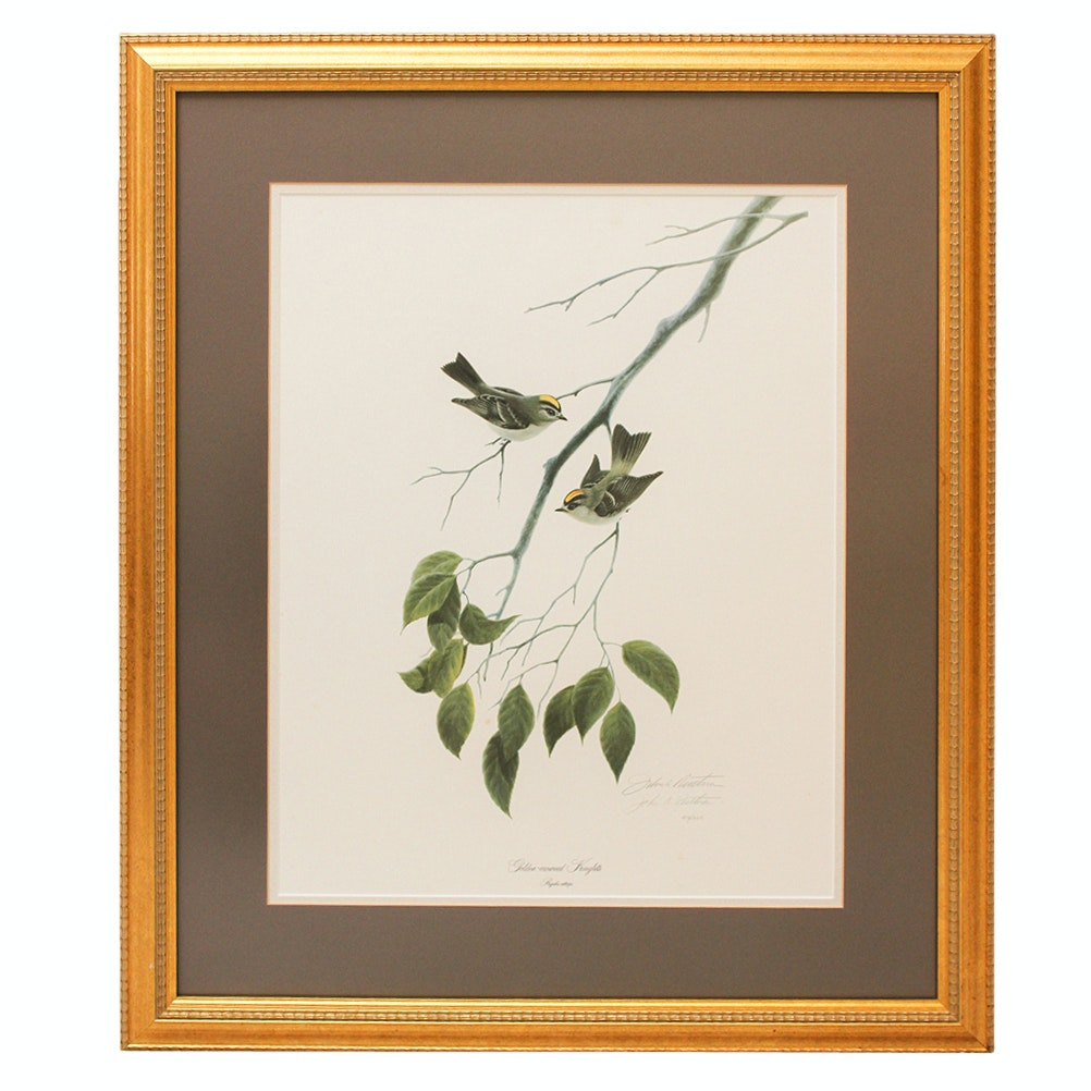 """John Ruthven Signed """"Golden Crowned Kinglets"""" Limited Edition Offset Lithograph"""