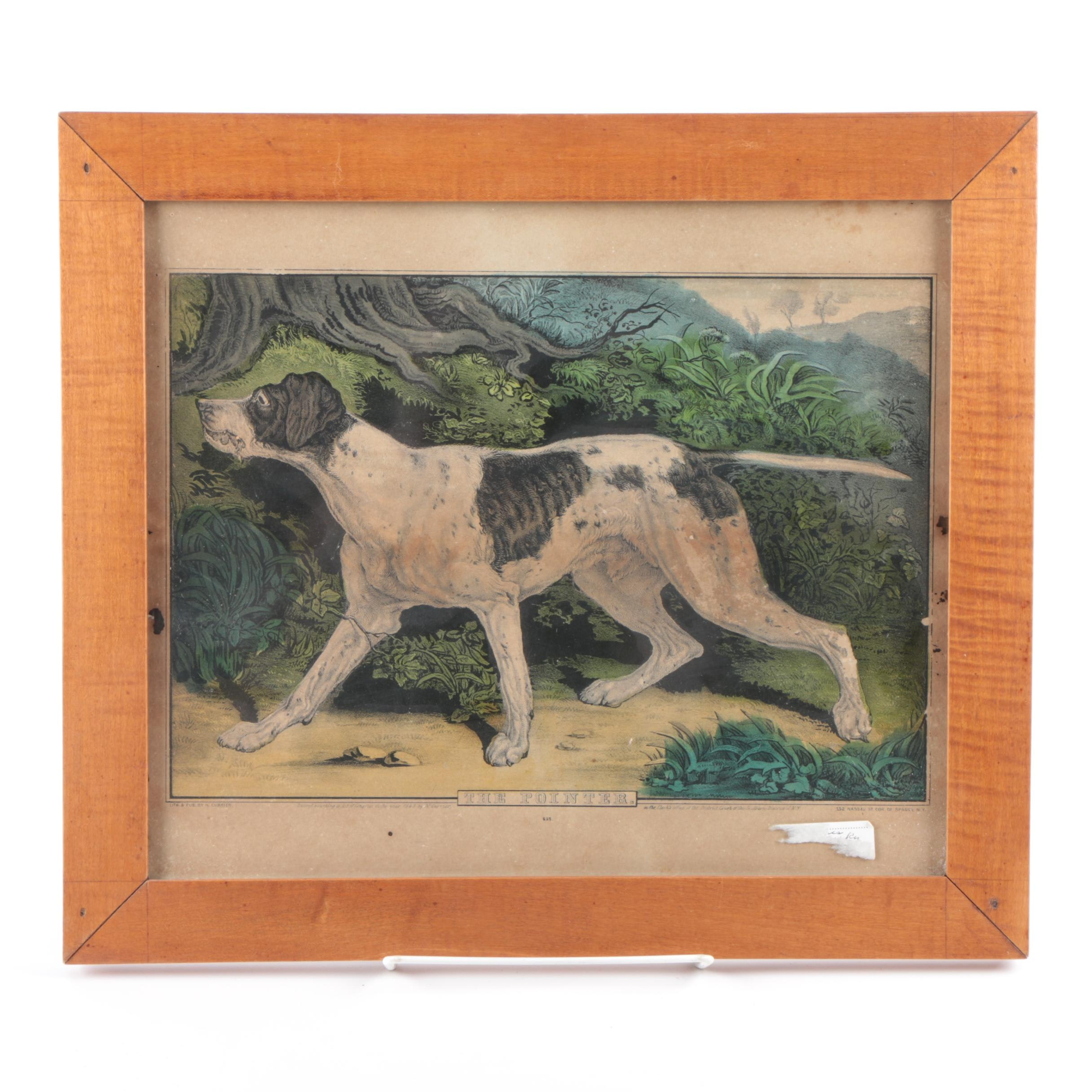 """Antique Hand Colored Print """"The Pointer"""""""