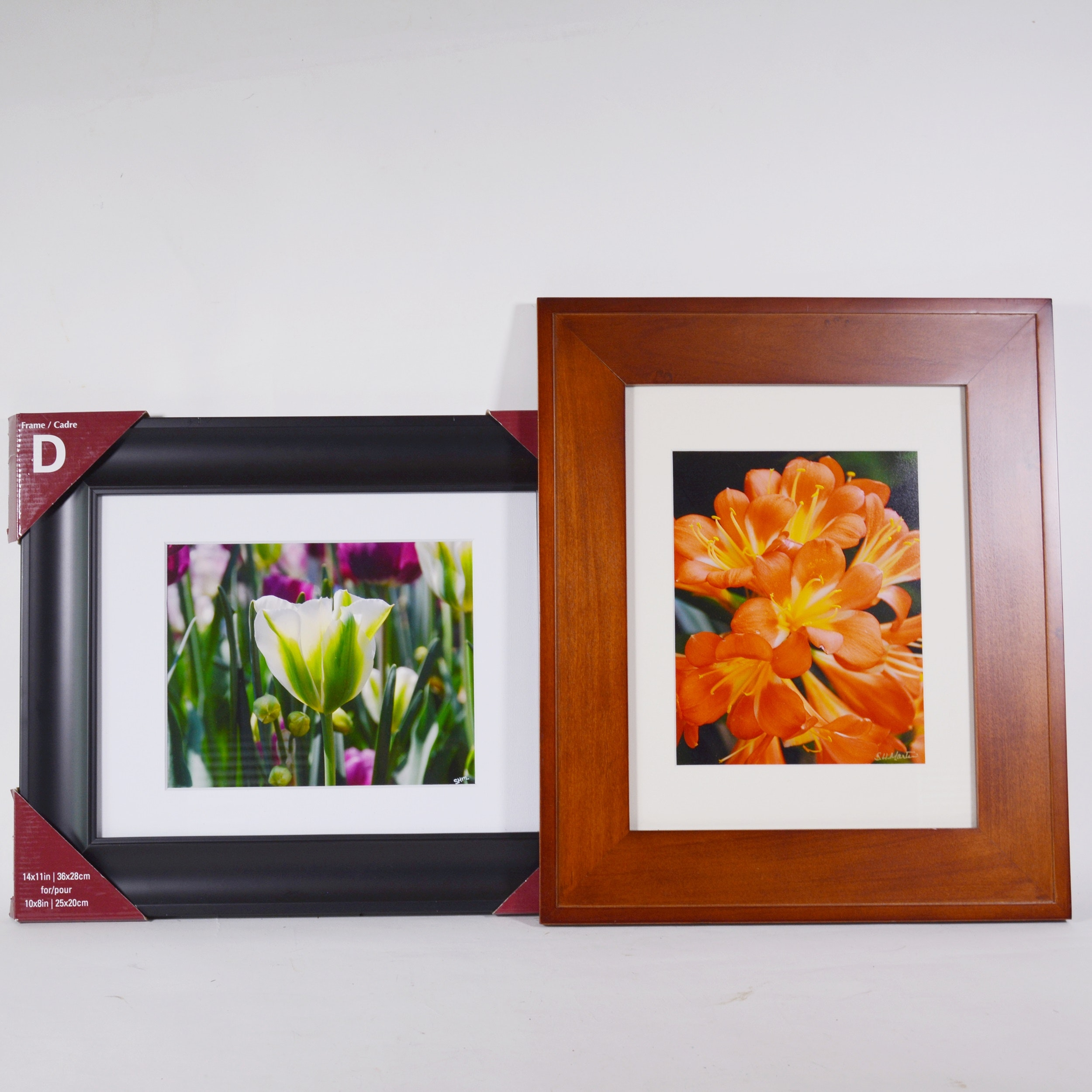 Poppies Photograph and Clivia Photograph After S.H. Martin