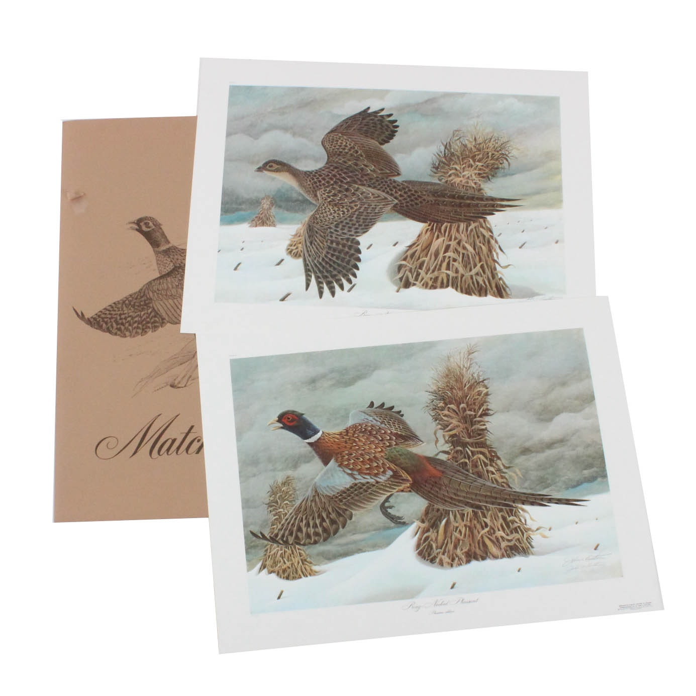 """Ring Neck Pheasant Matched Pair"" John Ruthven Signed Limited Offset Lithographs"