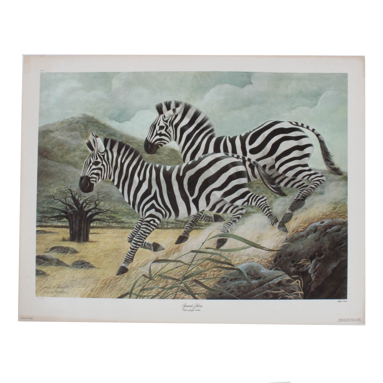 "John Ruthven Limited Edition Offset Lithograph ""Grants Zebra"""