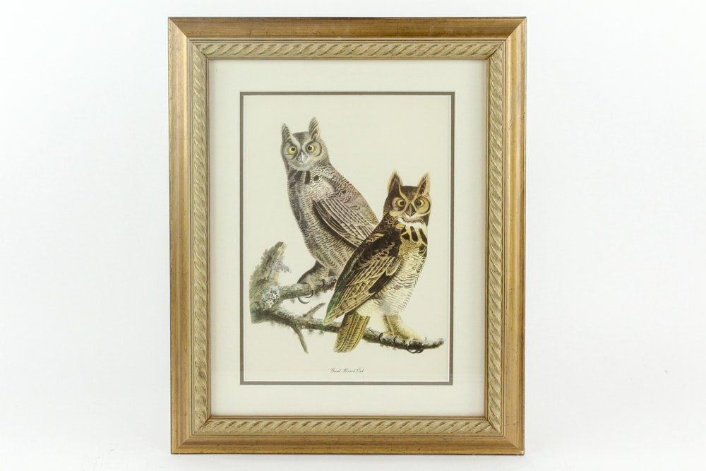 Framed Offset Lithograph Print After J.J. Audubon