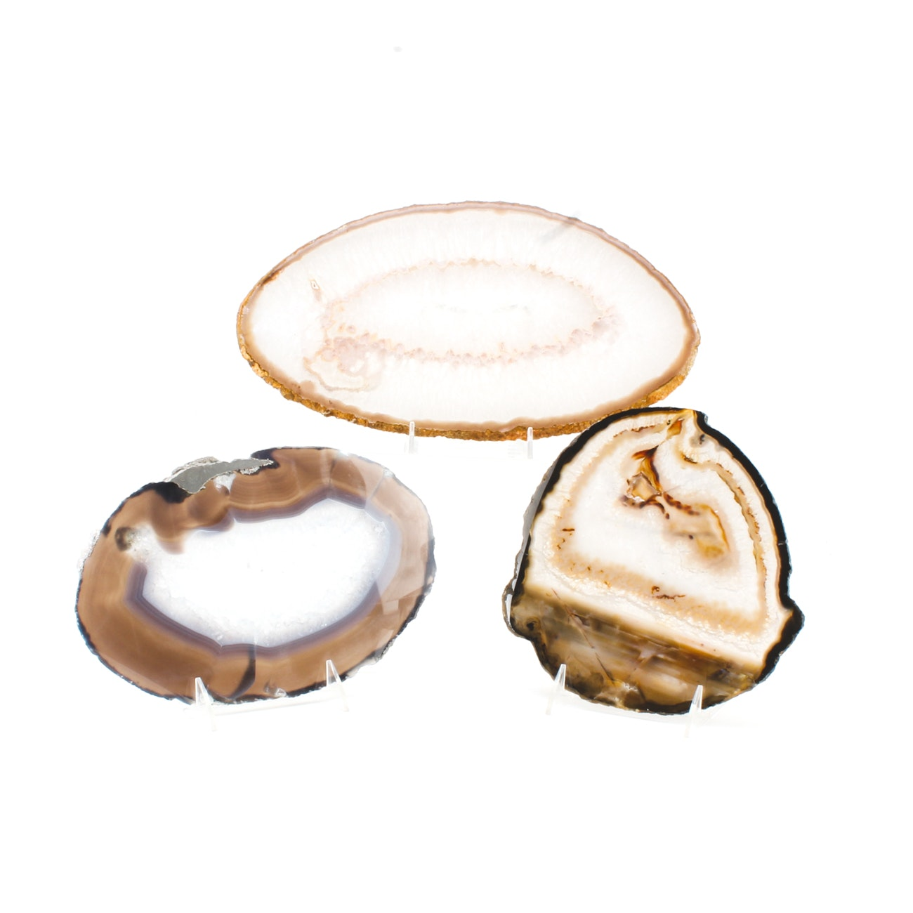 Collection of Three Agate Geode Cross-Sections