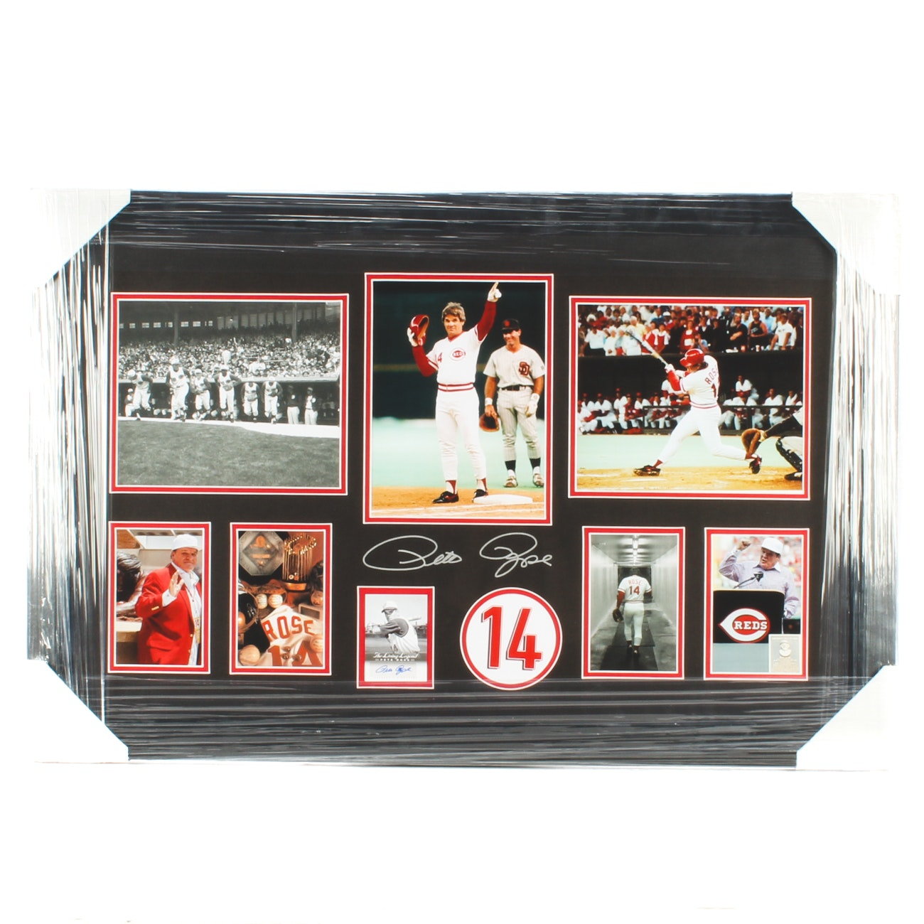 Pete Rose Signed Matted and Framed Baseball Collage COA