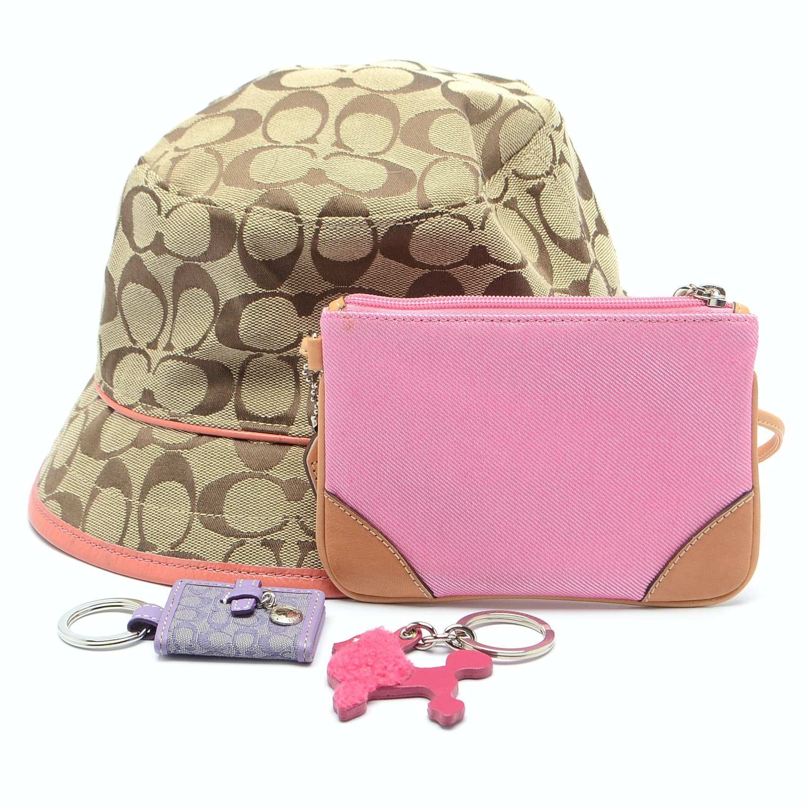 Collection of Coach Accessories