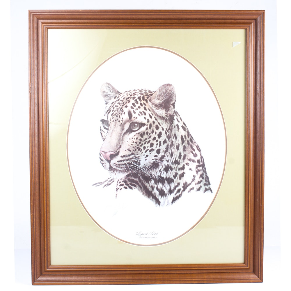 Gey Coheleach Offset Lithographs of Big Cats