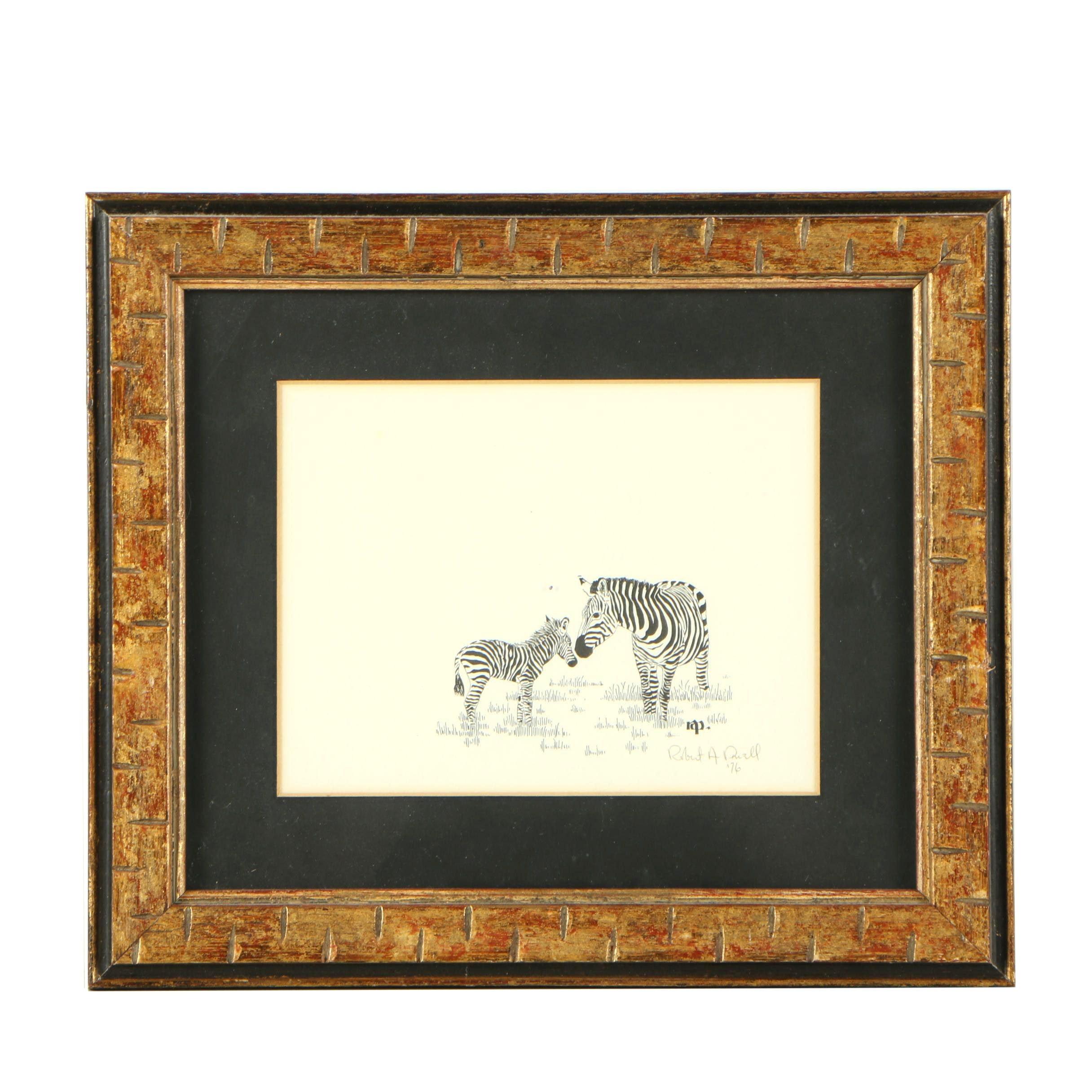 Robert A. Powell Lithograph of Zebra