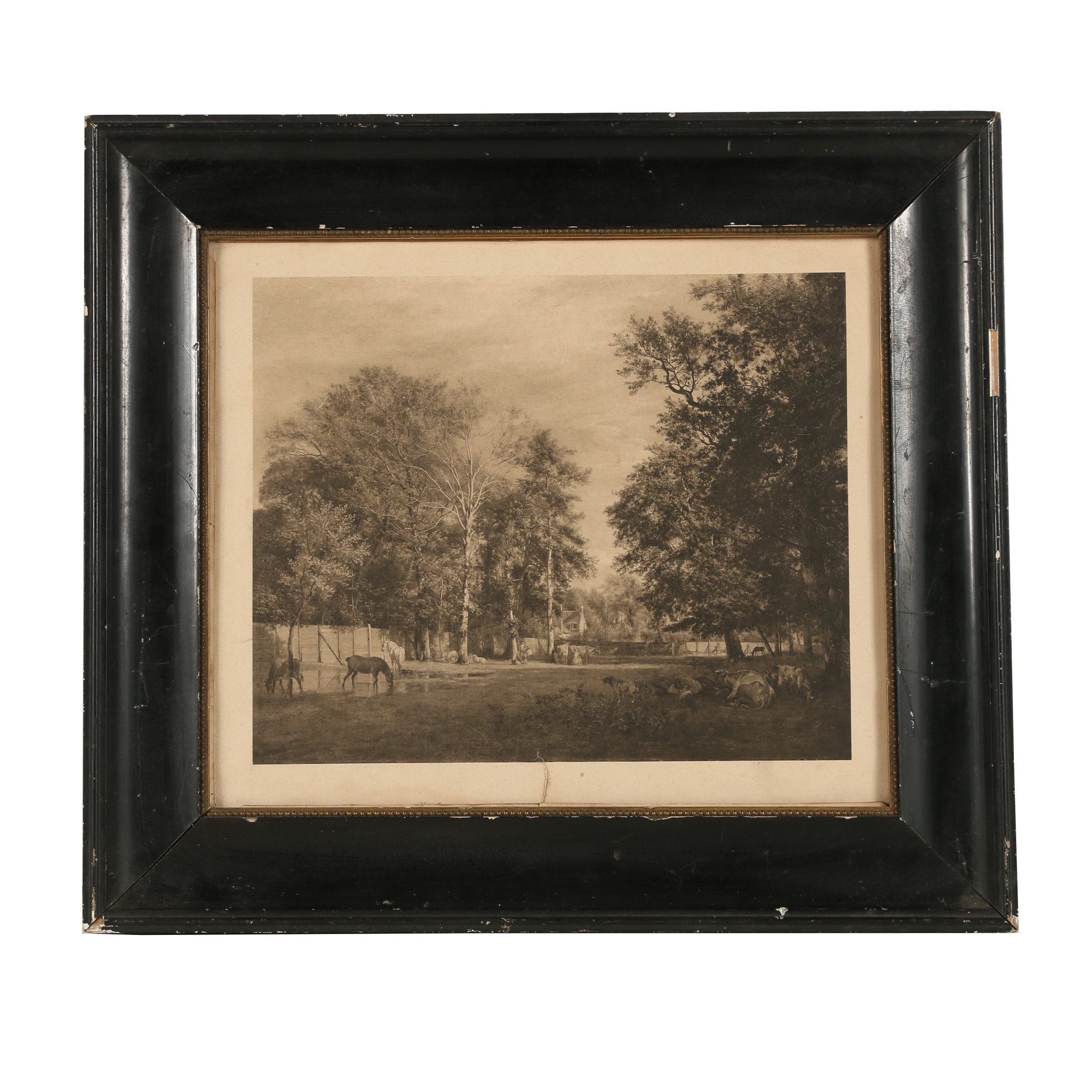 Early-20th-Century Photogravure