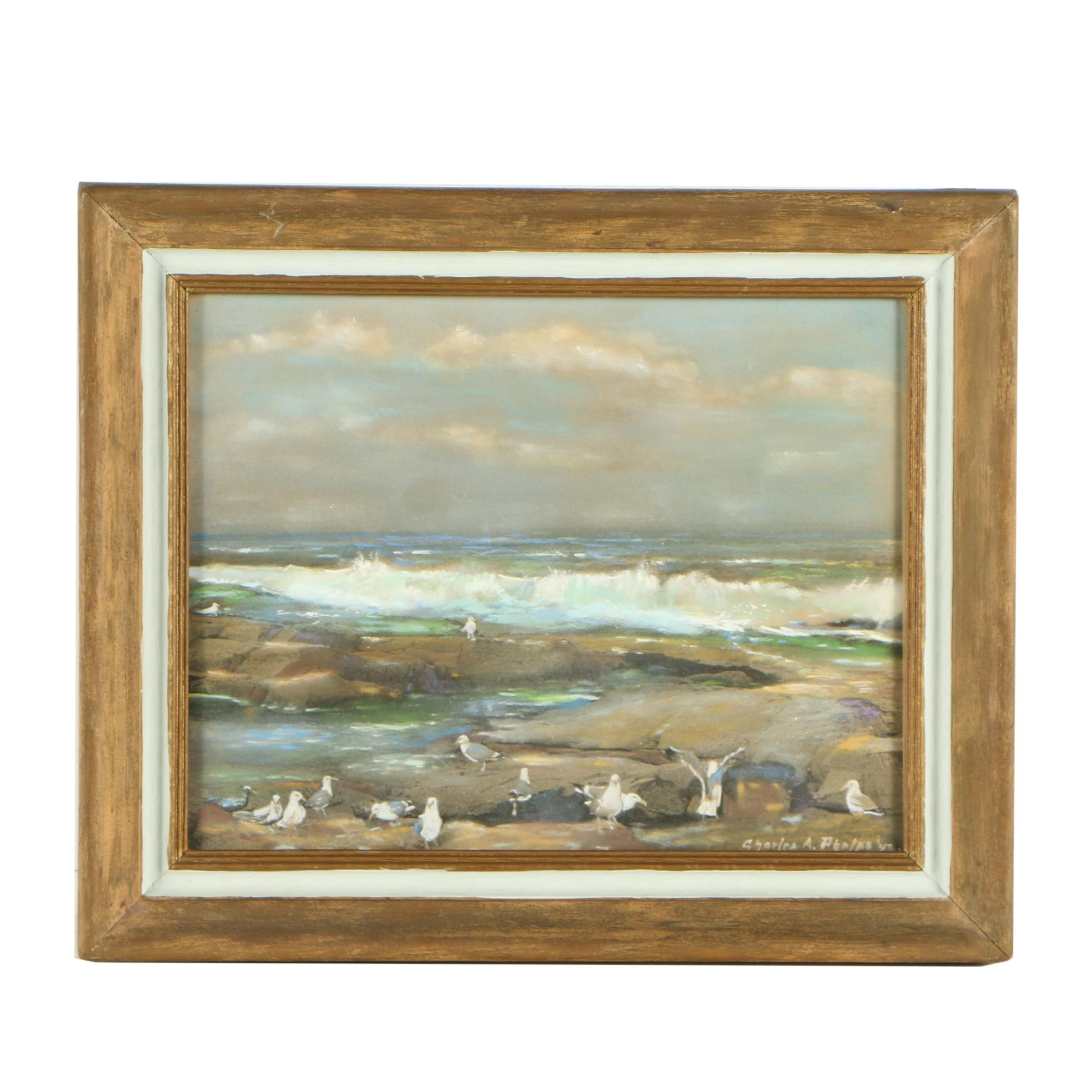 Charles A. Phelps Pastel Drawing of Seagulls on Ocean Shore