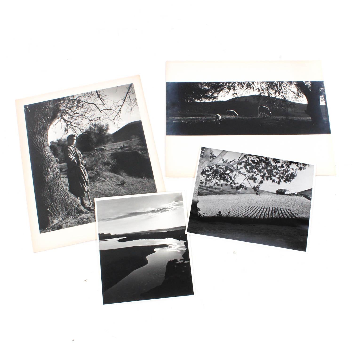 Don Dover Black and White Photographs
