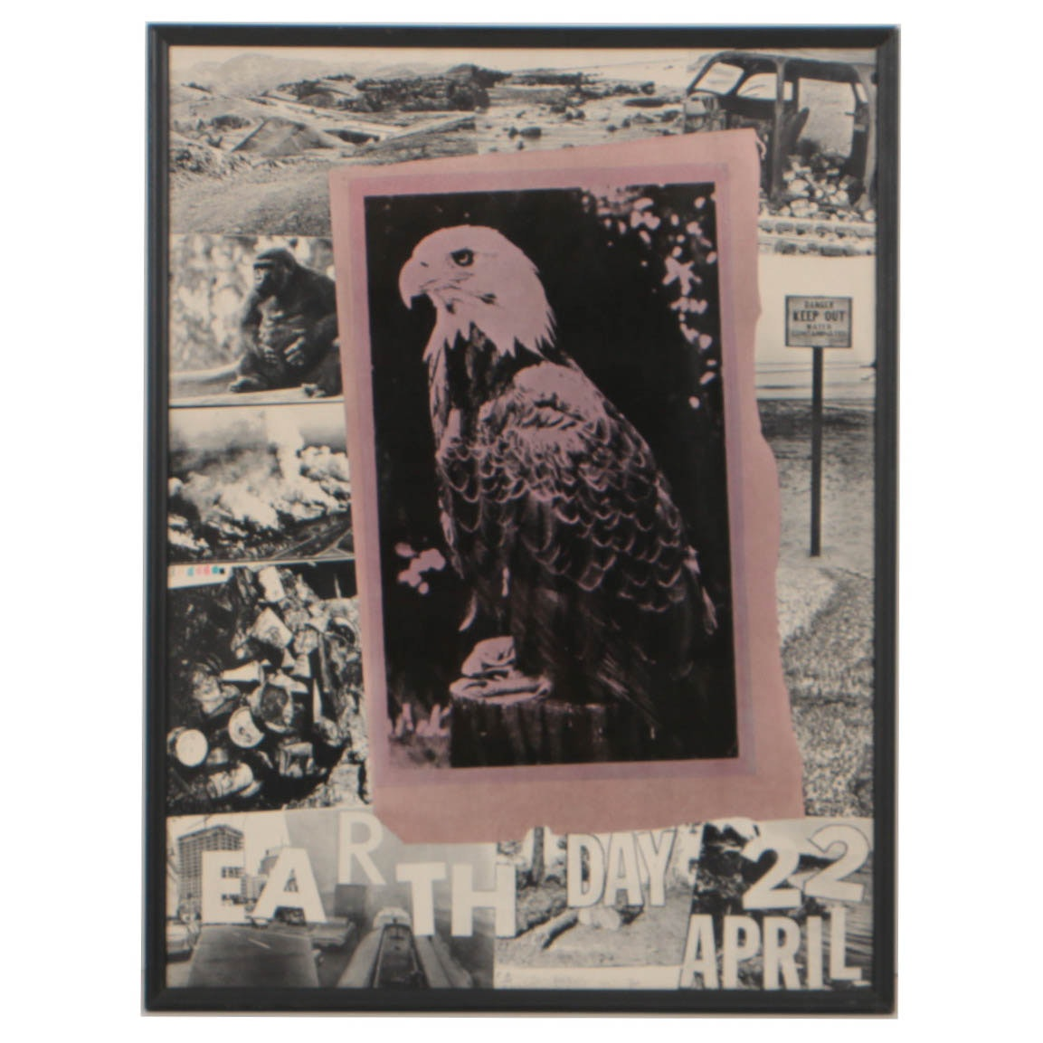 Robert Rauschenberg 1970 Offset Lithograph Poster for Earth Day