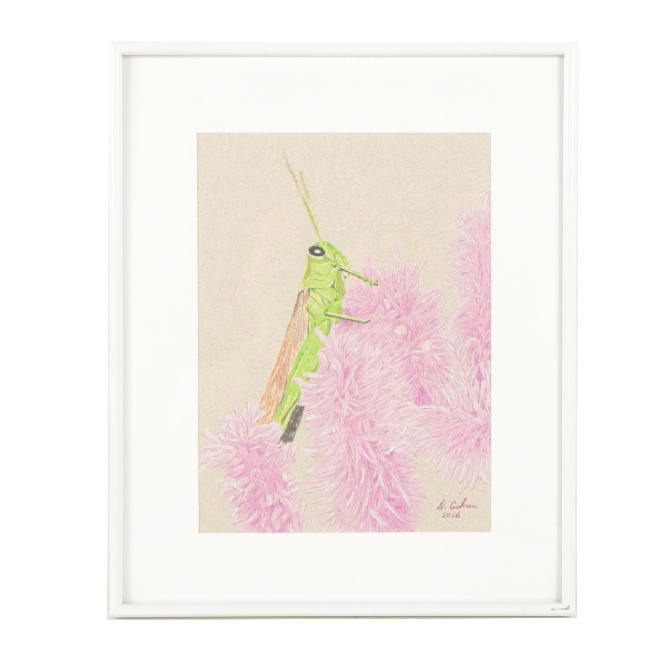 "David Cochran Colored Pencil Drawing ""Hopper"""