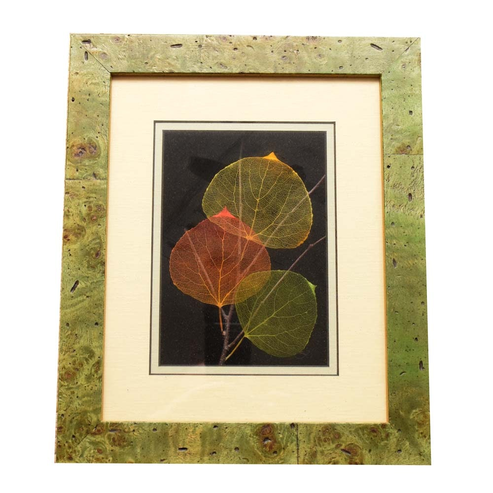 Booker Morey Leaf Lines Mixed-Media Aspen Leaf Art