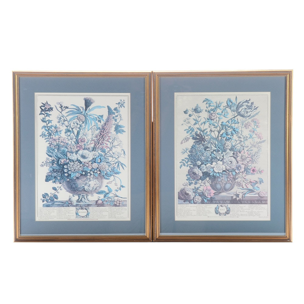 Two Offset Lithograph Prints after Robert Furber Twelve Months of Flowers