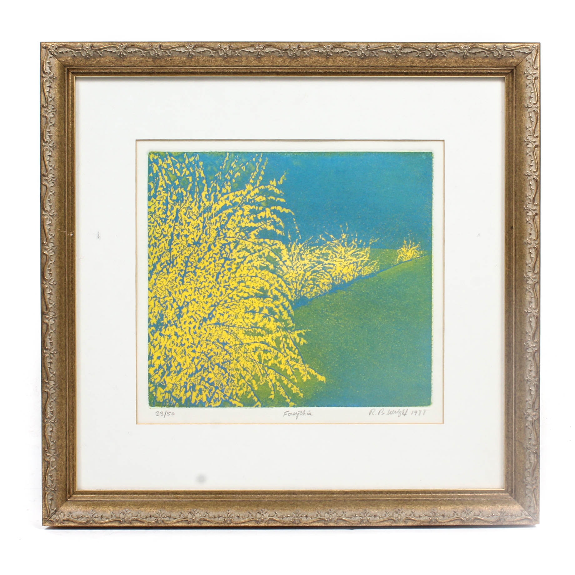 "Limited Edition Robert B. Wright ""Forsythia"" Color Aquatint"