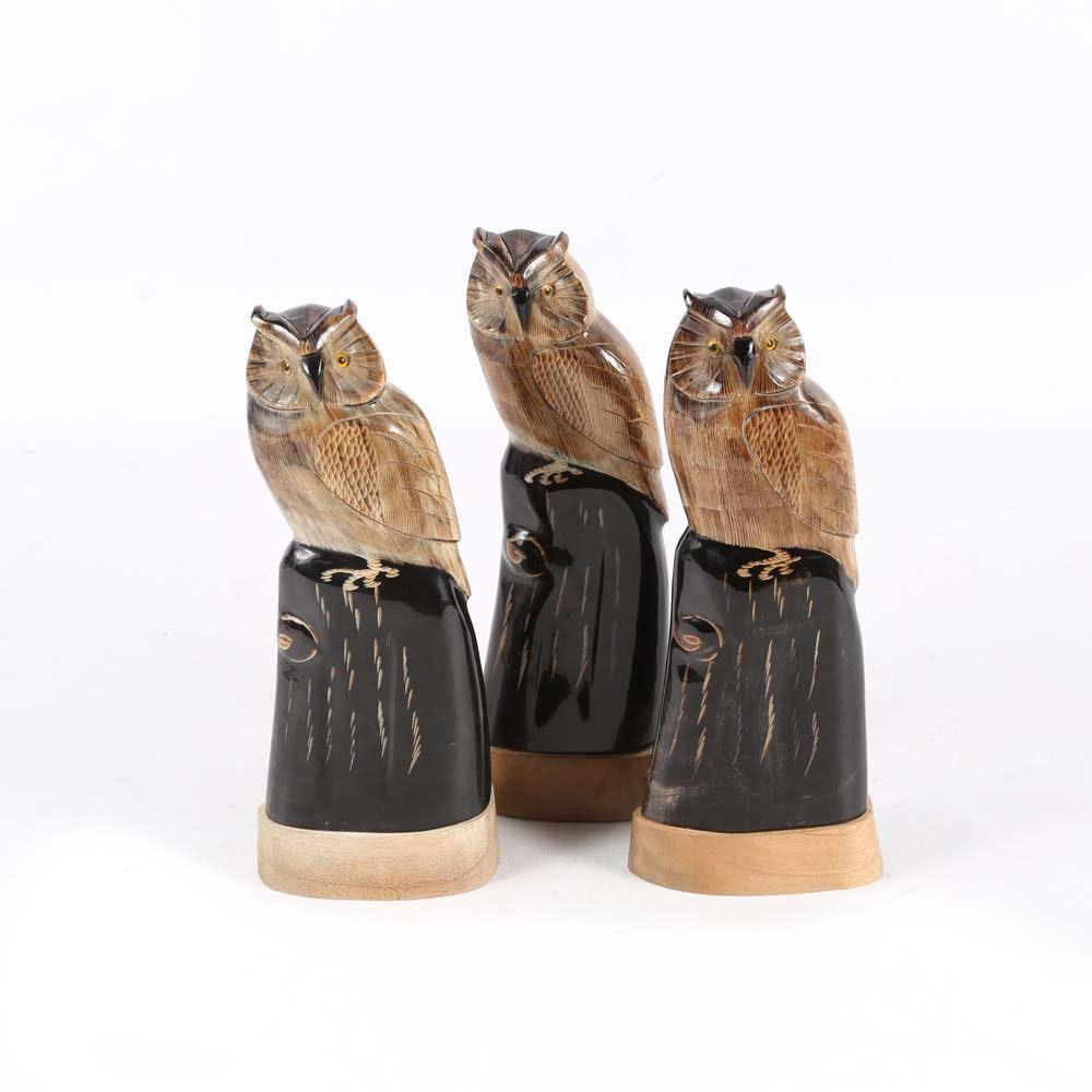 Carved Buffalo Horn Owls