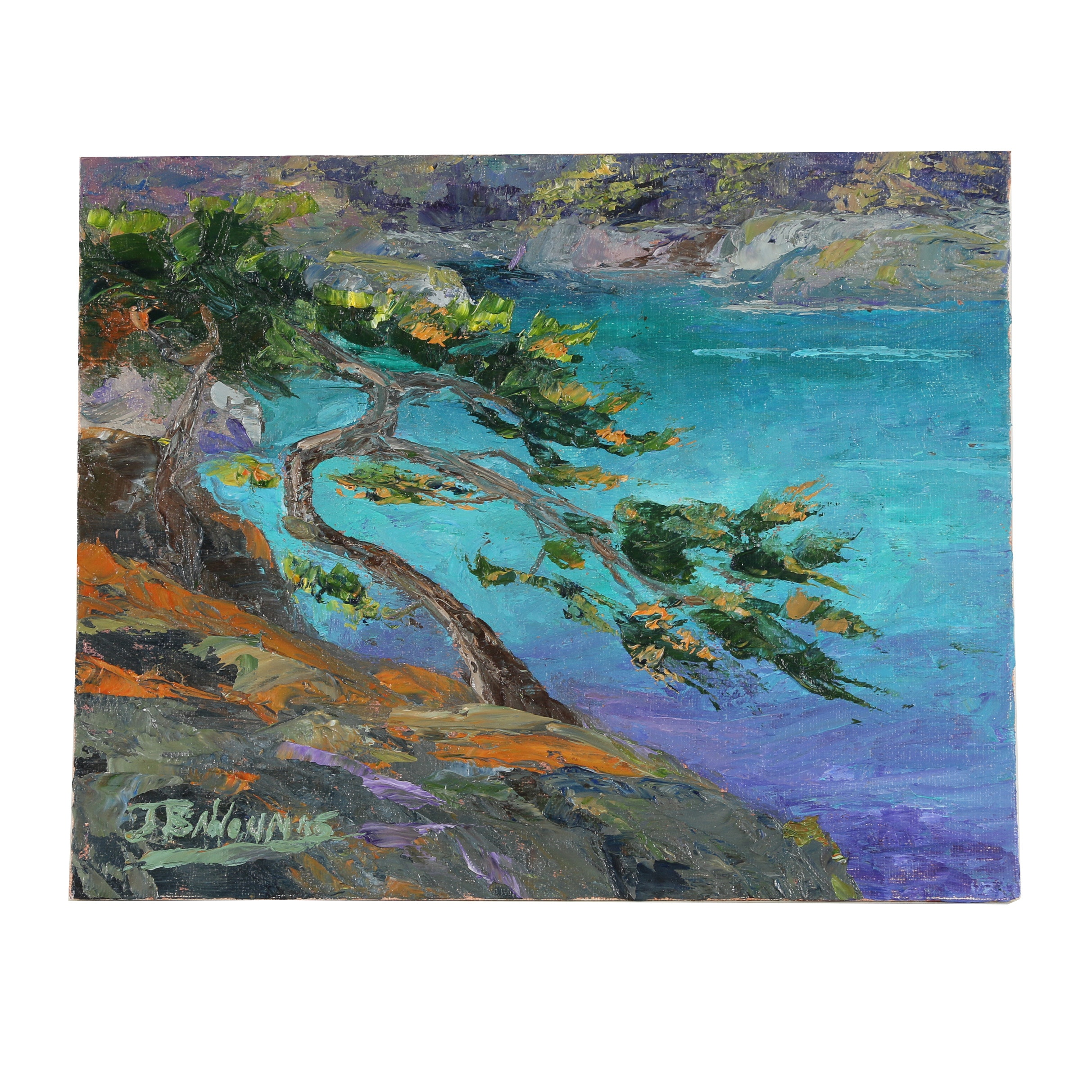 "James Baldoumas Oil Painting ""Coastal Pine"""
