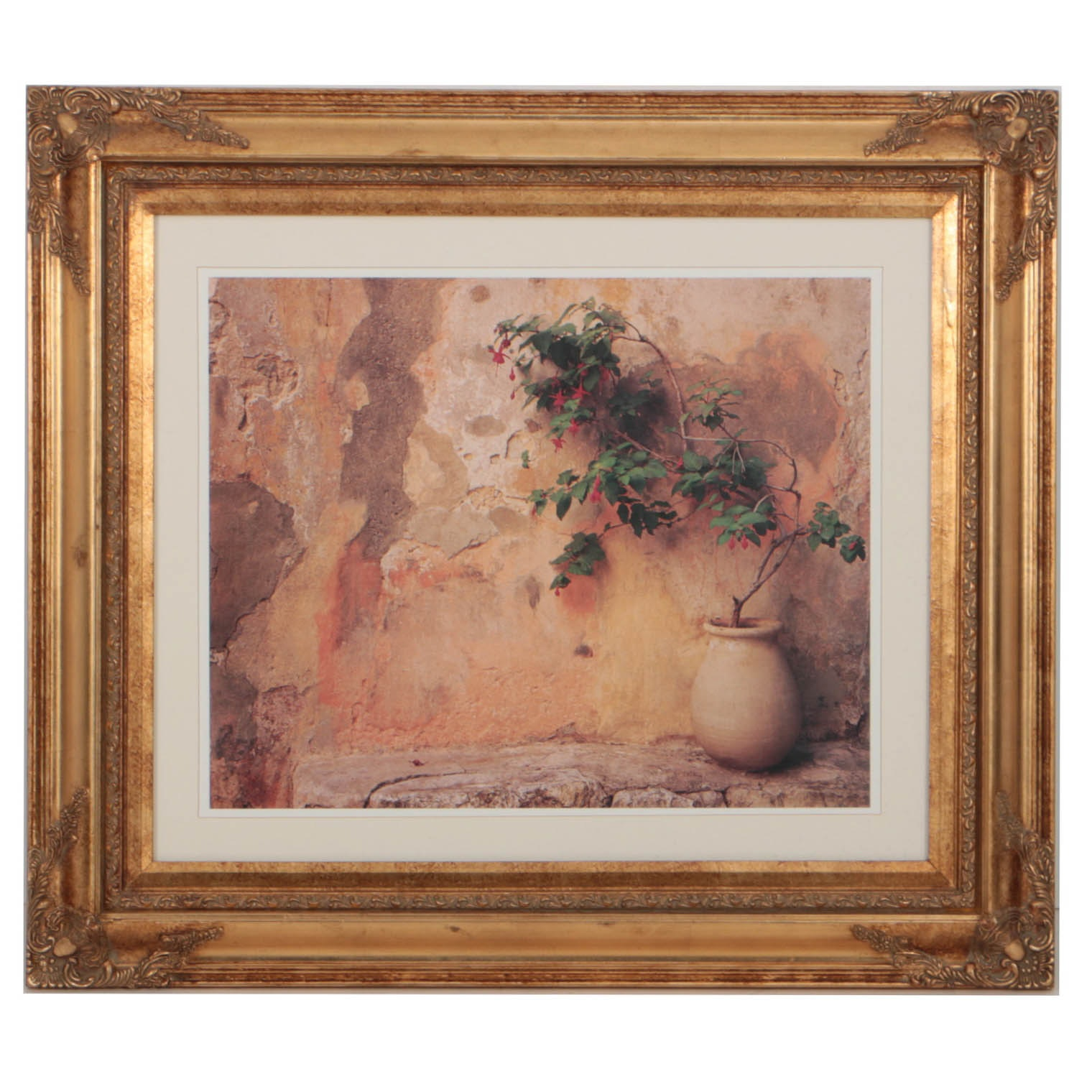 """Offset Lithograph After 20th Century Photograph """"Fuchsia in Pot"""""""