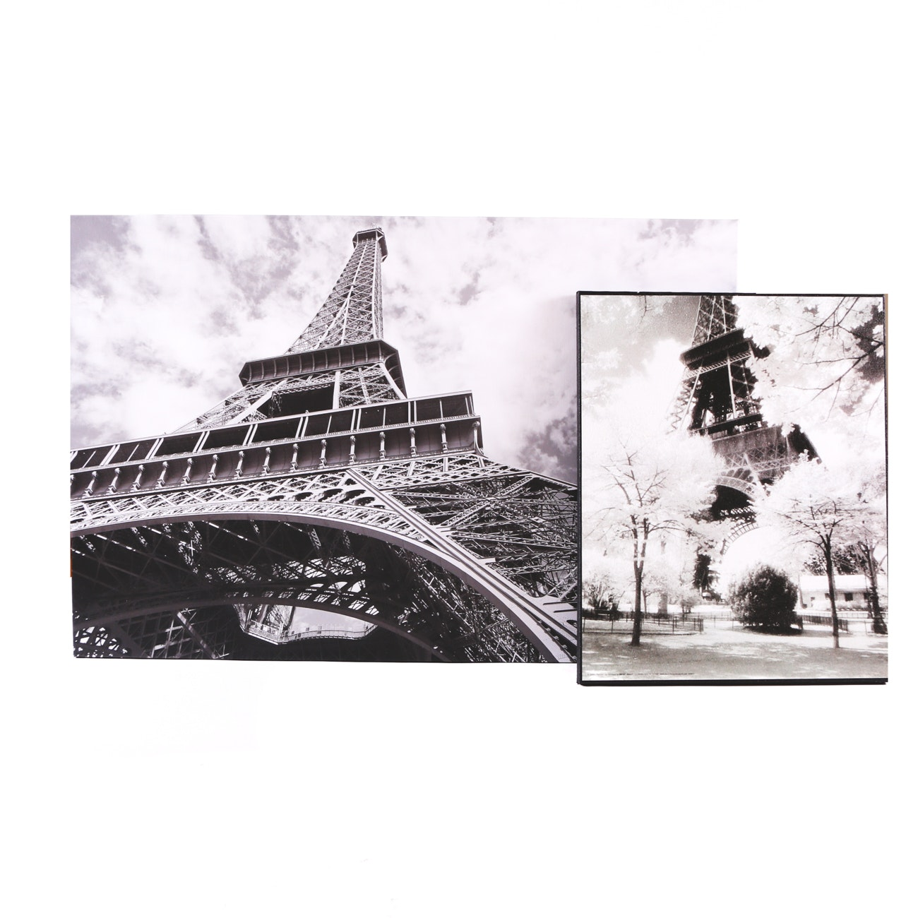 Pair of Photographs on Canvas