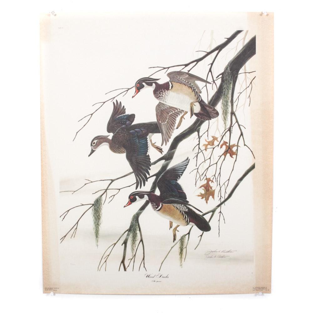 "John Ruthven ""Wood Ducks"" Signed Limited Edition Print"