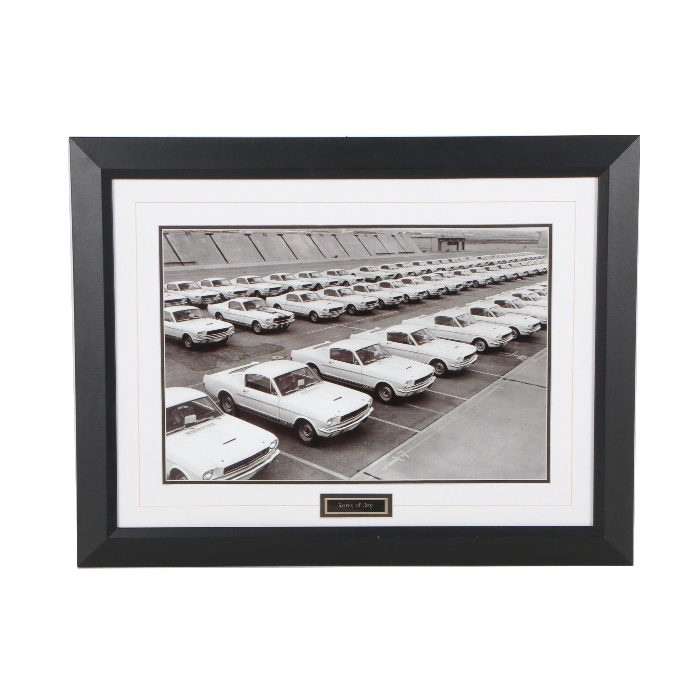 """Giclée featuring 1965 Shelby Mustangs """"Rows of Joy"""""""