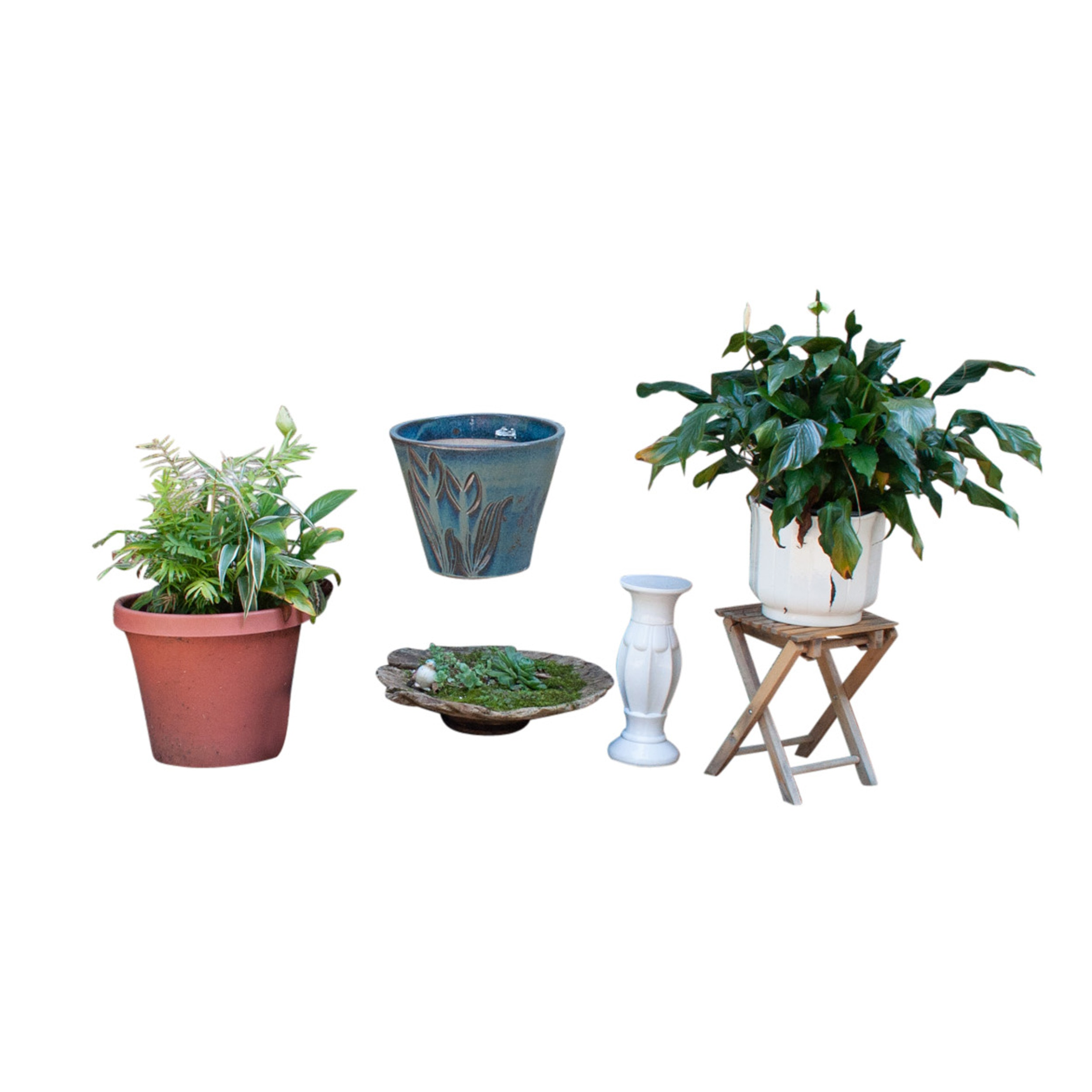 Outdoor Plants and Planters